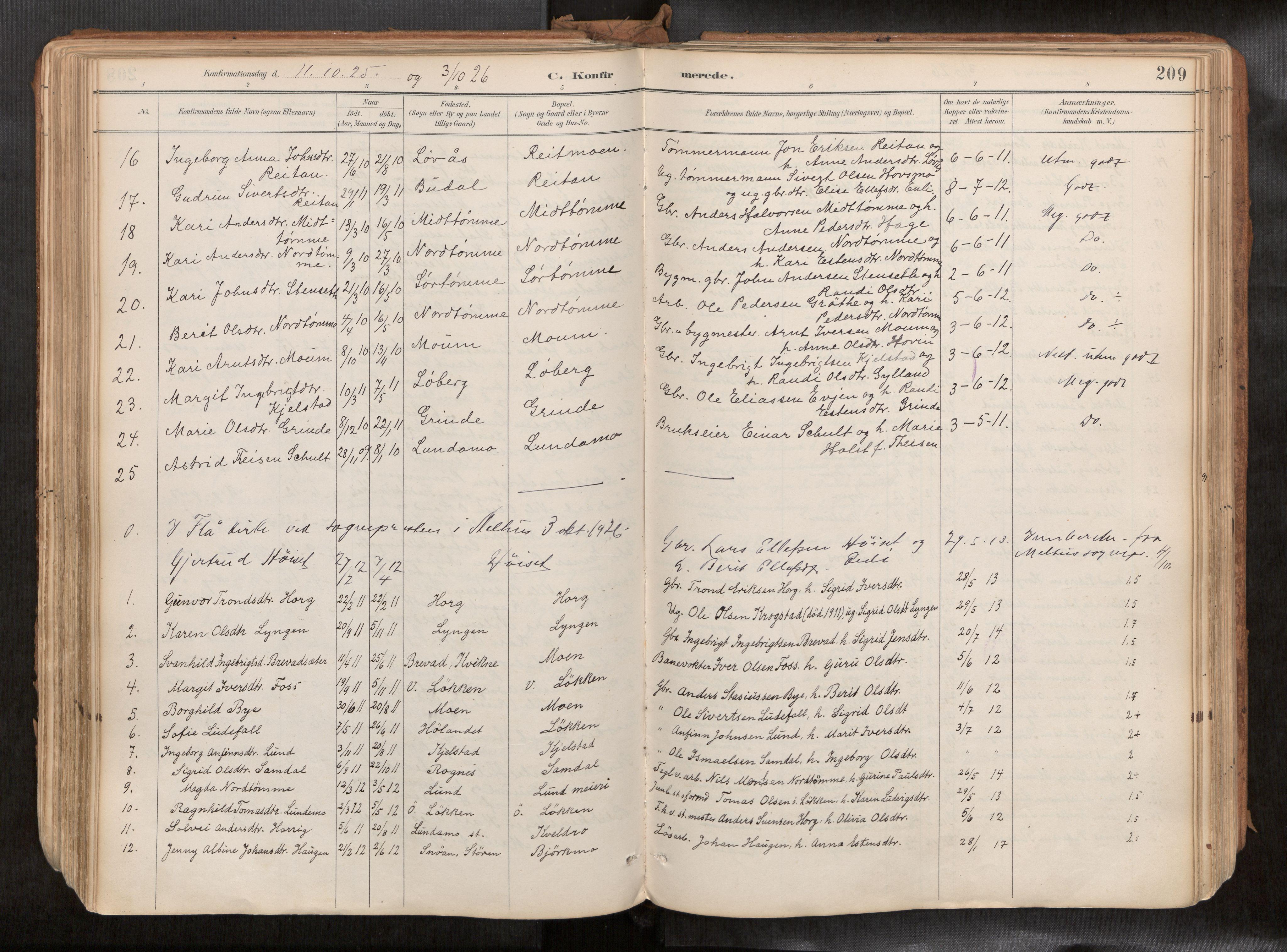 SAT, Ministerialprotokoller, klokkerbøker og fødselsregistre - Sør-Trøndelag, 692/L1105b: Ministerialbok nr. 692A06, 1891-1934, s. 209