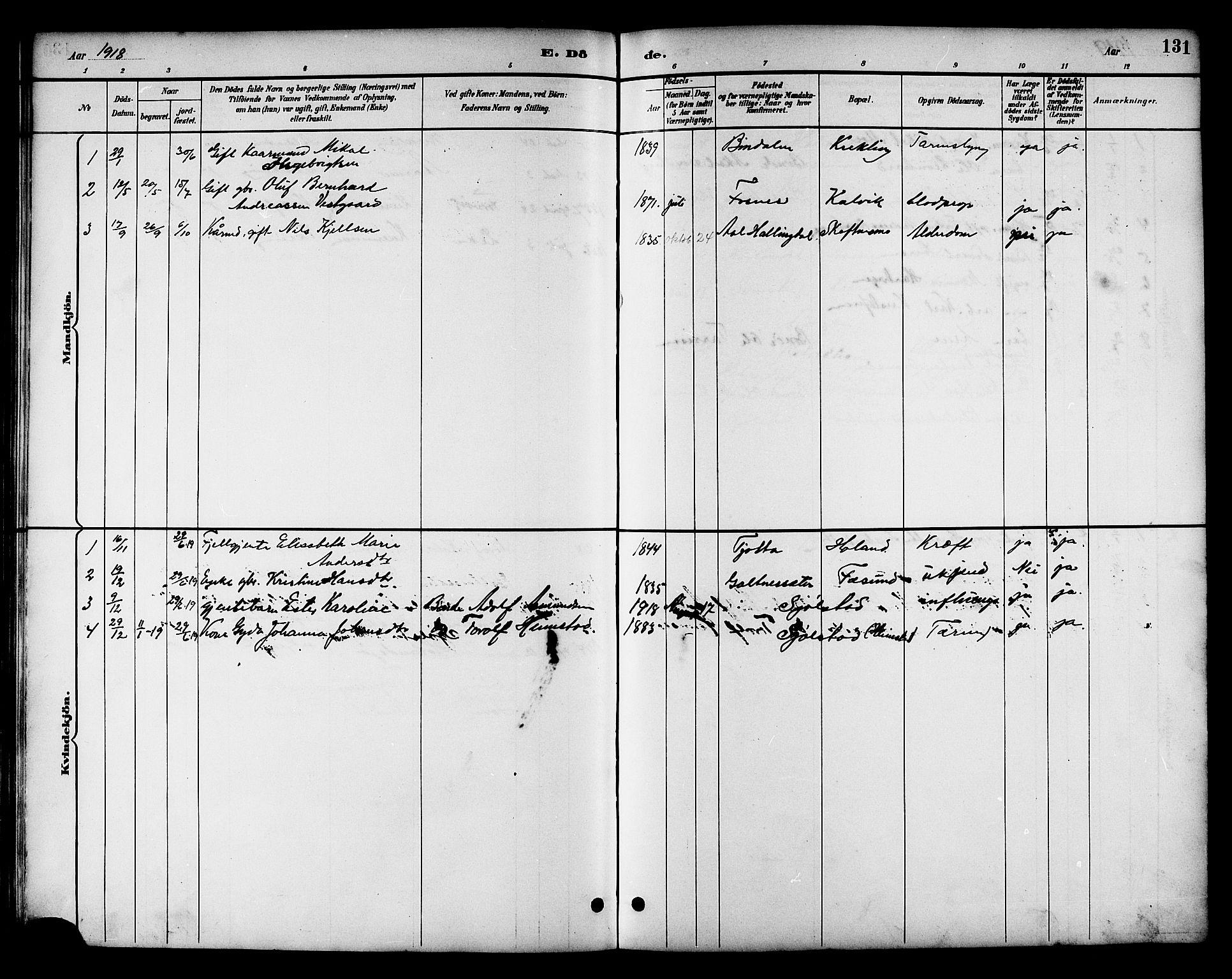 SAT, Ministerialprotokoller, klokkerbøker og fødselsregistre - Nord-Trøndelag, 783/L0662: Klokkerbok nr. 783C02, 1894-1919, s. 131