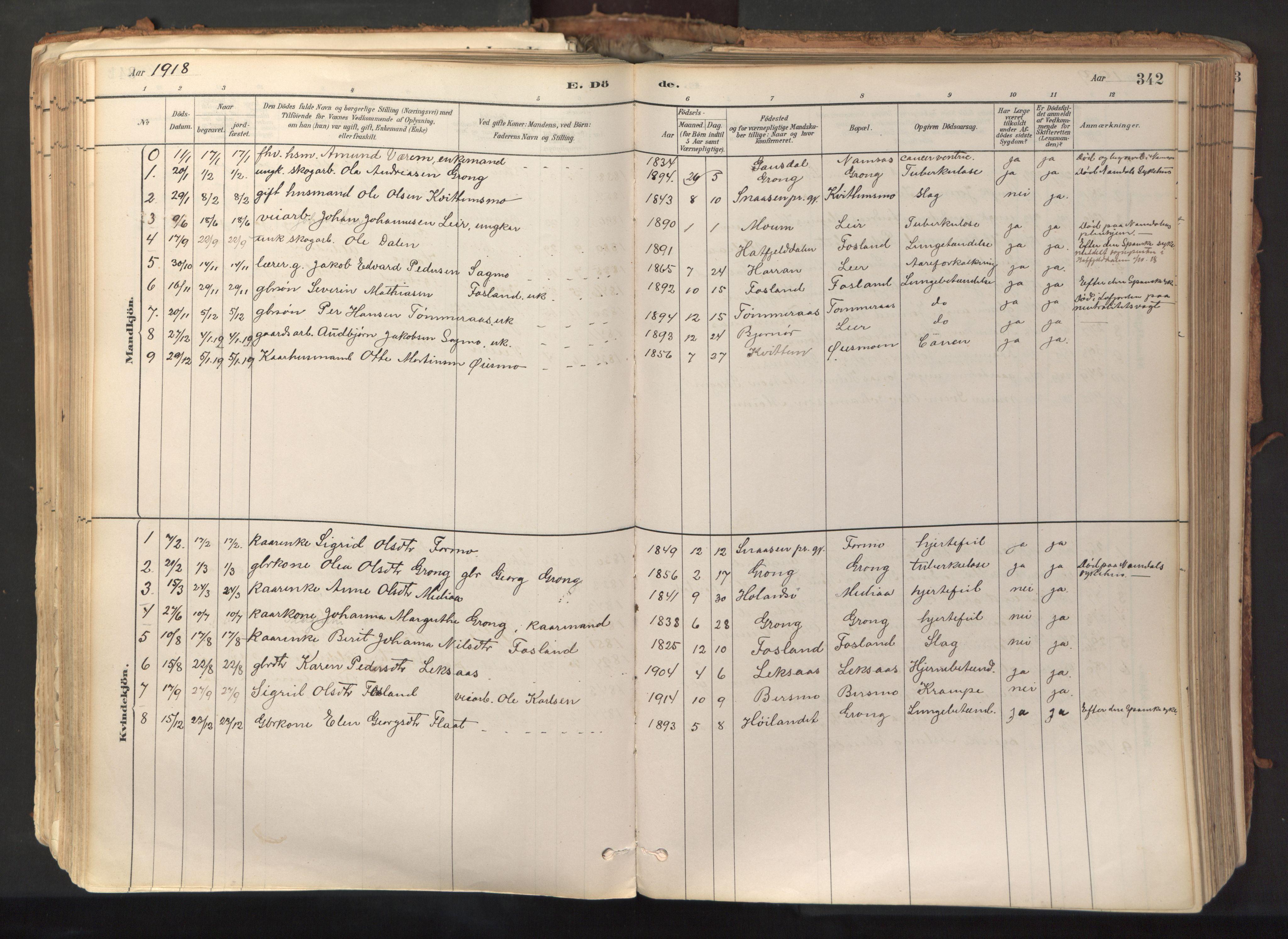 SAT, Ministerialprotokoller, klokkerbøker og fødselsregistre - Nord-Trøndelag, 758/L0519: Ministerialbok nr. 758A04, 1880-1926, s. 342