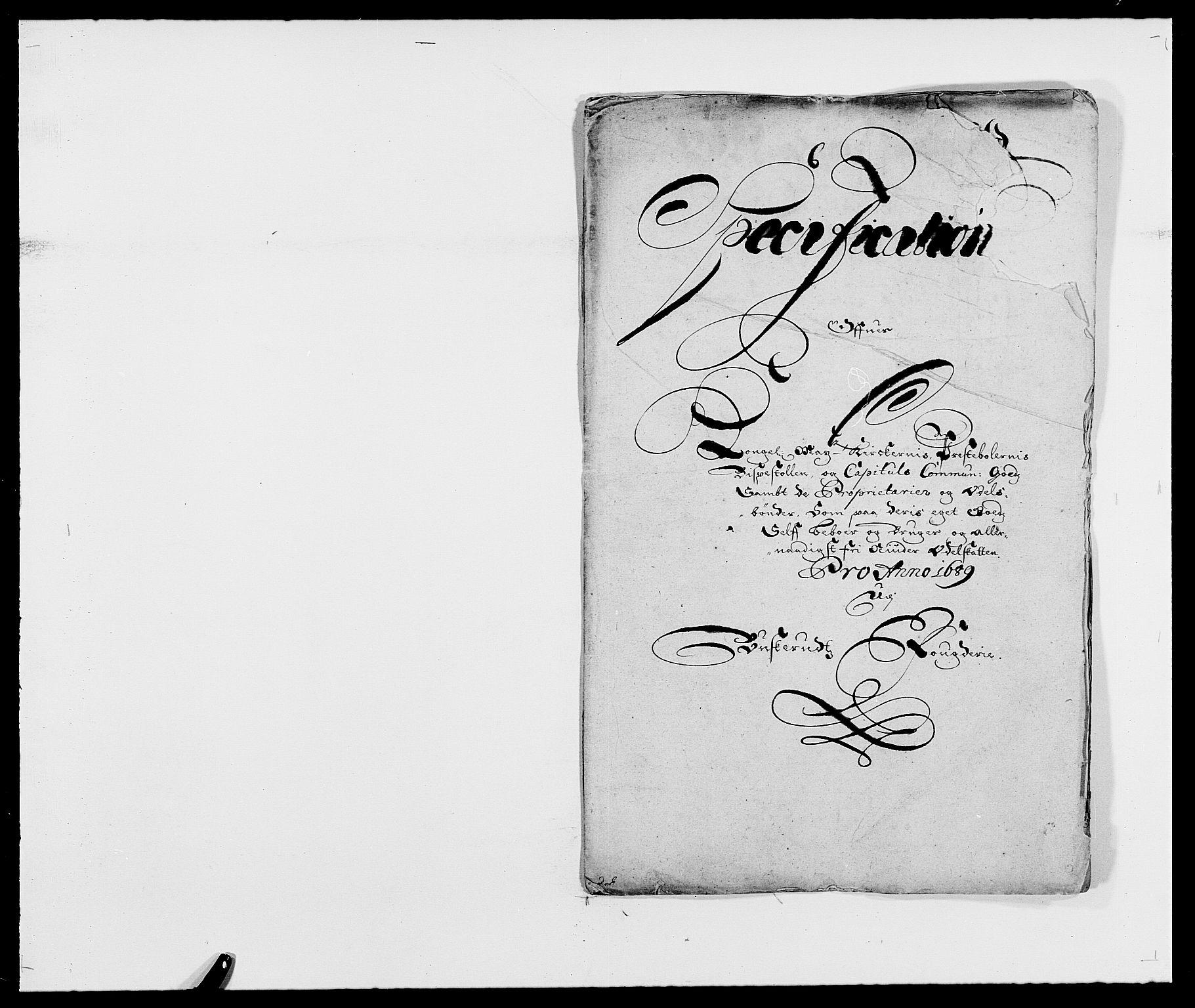 RA, Rentekammeret inntil 1814, Reviderte regnskaper, Fogderegnskap, R25/L1680: Fogderegnskap Buskerud, 1689-1690, s. 244