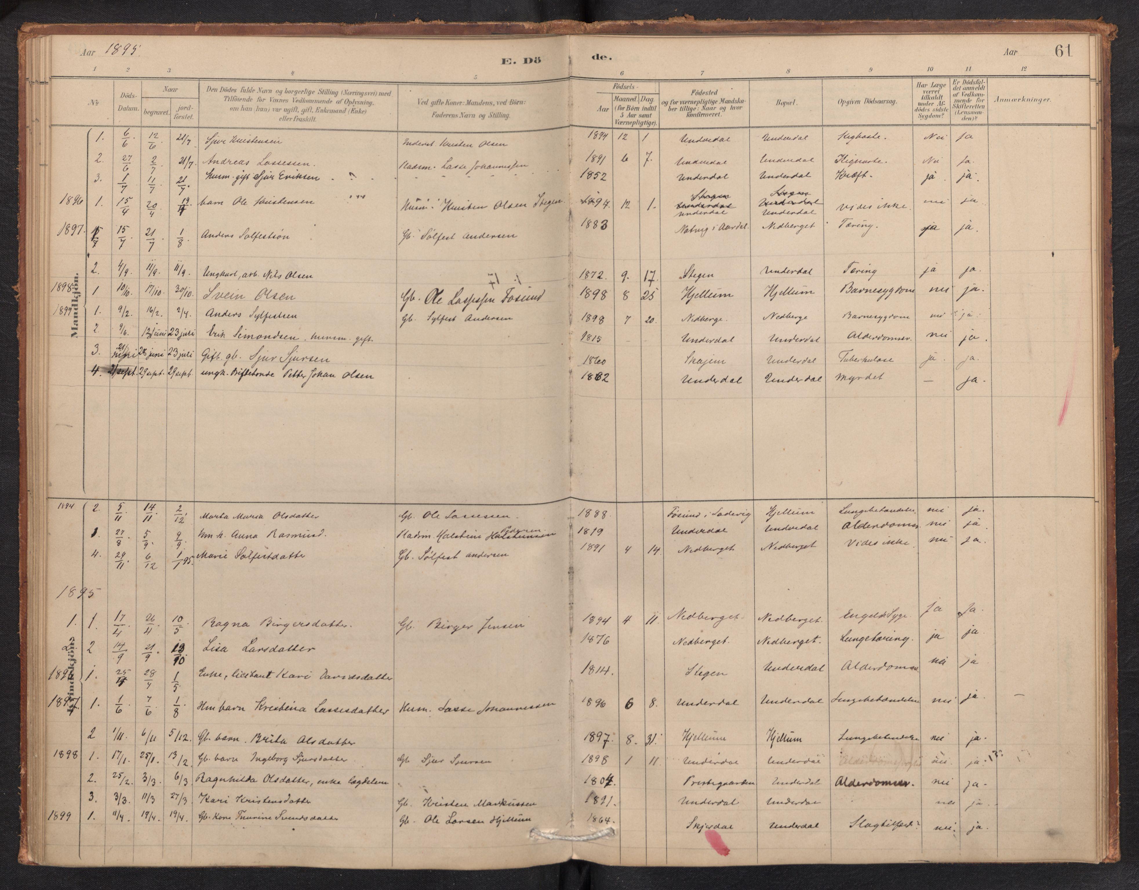 SAB, Aurland Sokneprestembete*, Ministerialbok nr. E 1, 1880-1907, s. 60b-61a