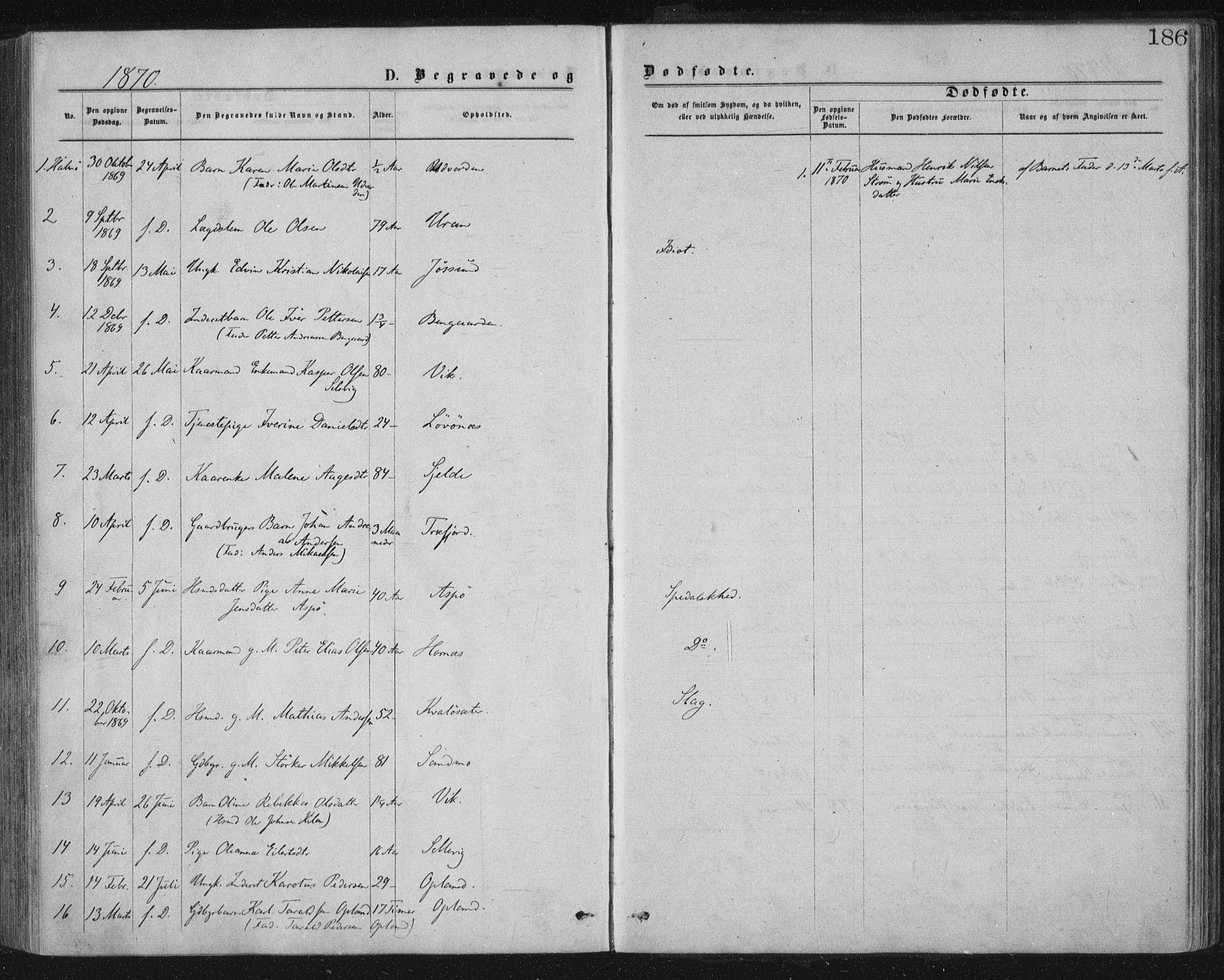 SAT, Ministerialprotokoller, klokkerbøker og fødselsregistre - Nord-Trøndelag, 771/L0596: Ministerialbok nr. 771A03, 1870-1884, s. 186