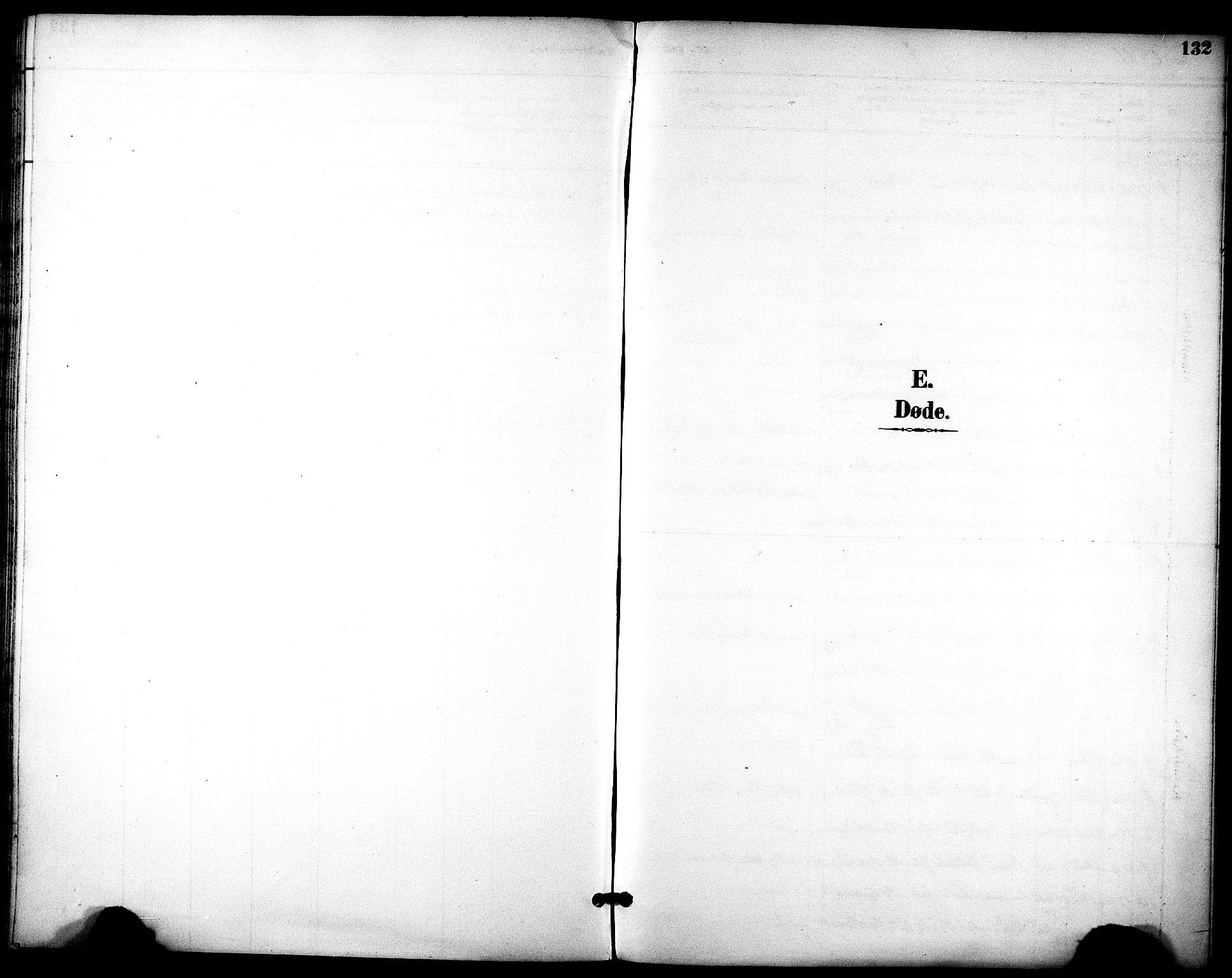 SAT, Ministerialprotokoller, klokkerbøker og fødselsregistre - Sør-Trøndelag, 686/L0984: Ministerialbok nr. 686A02, 1891-1906, s. 132