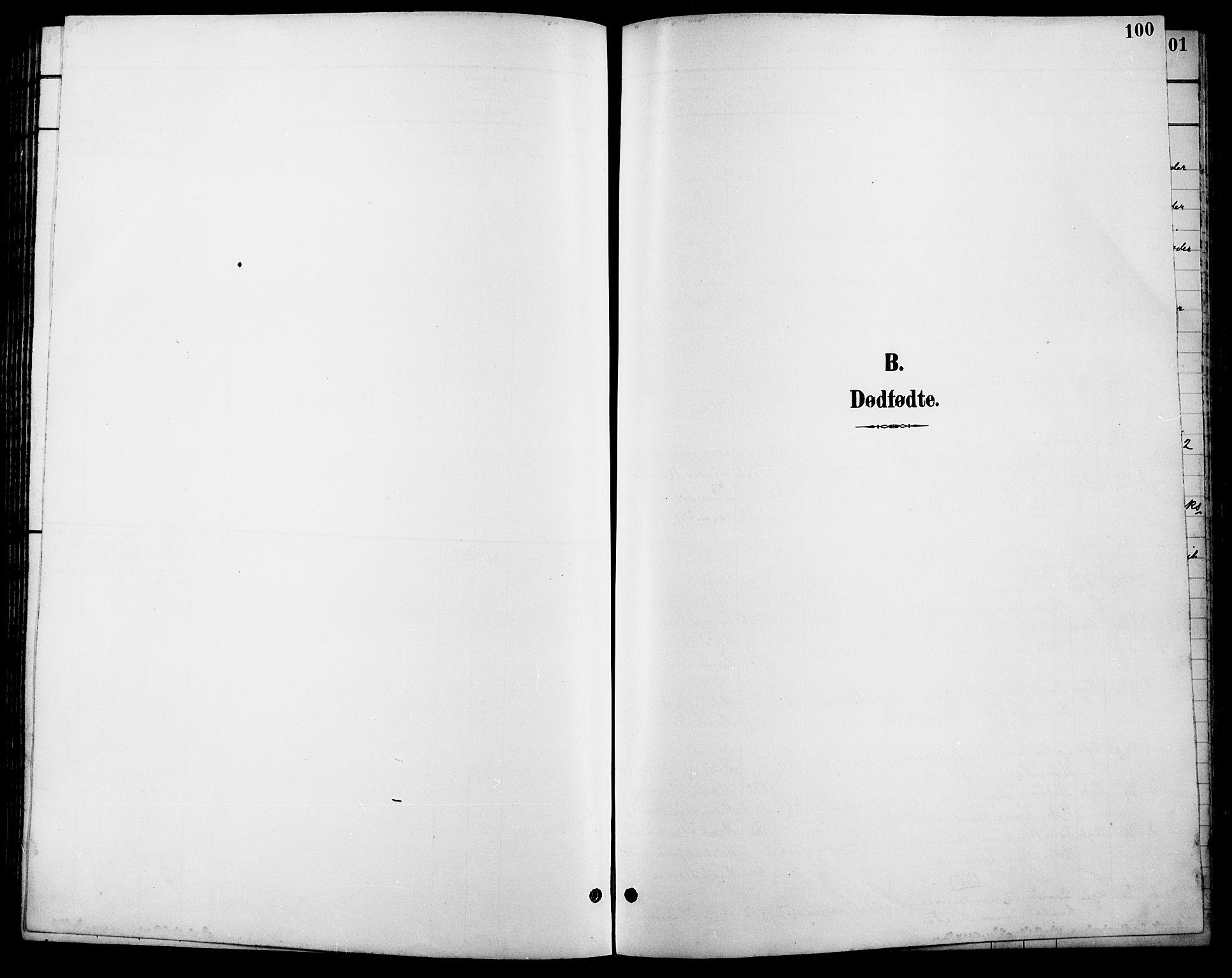 SAH, Lesja prestekontor, Klokkerbok nr. 7, 1895-1919, s. 100