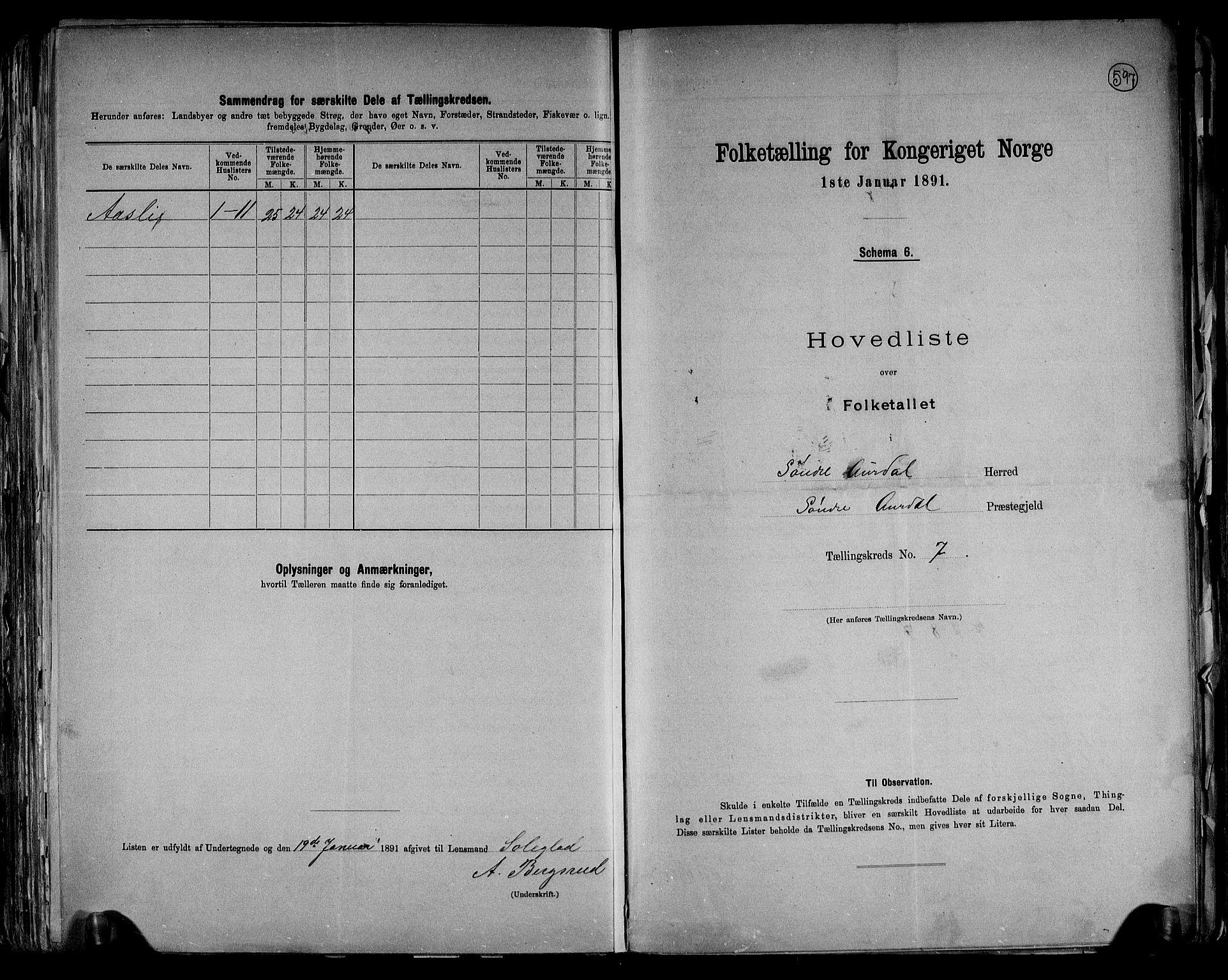 RA, Folketelling 1891 for 0540 Sør-Aurdal herred, 1891, s. 20