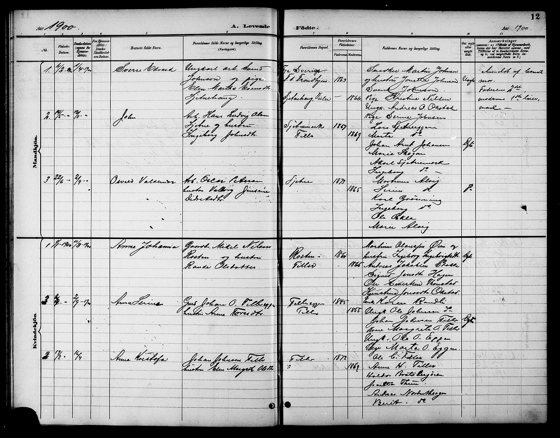 SAT, Ministerialprotokoller, klokkerbøker og fødselsregistre - Sør-Trøndelag, 621/L0460: Klokkerbok nr. 621C03, 1896-1914, s. 12