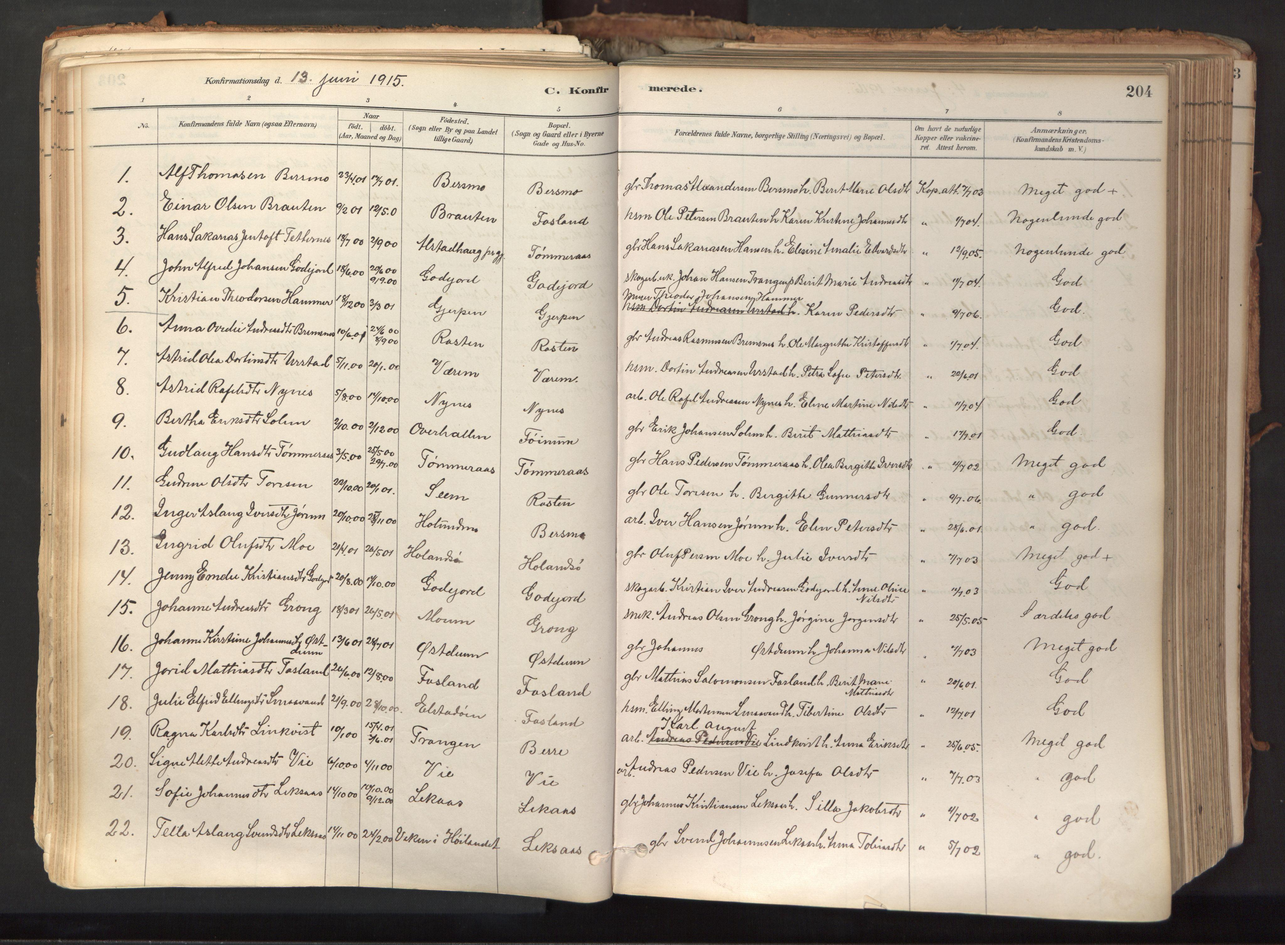 SAT, Ministerialprotokoller, klokkerbøker og fødselsregistre - Nord-Trøndelag, 758/L0519: Ministerialbok nr. 758A04, 1880-1926, s. 204