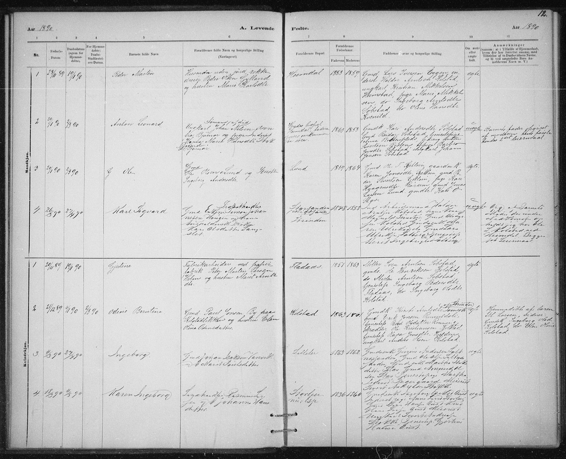 SAT, Ministerialprotokoller, klokkerbøker og fødselsregistre - Sør-Trøndelag, 613/L0392: Ministerialbok nr. 613A01, 1887-1906, s. 12