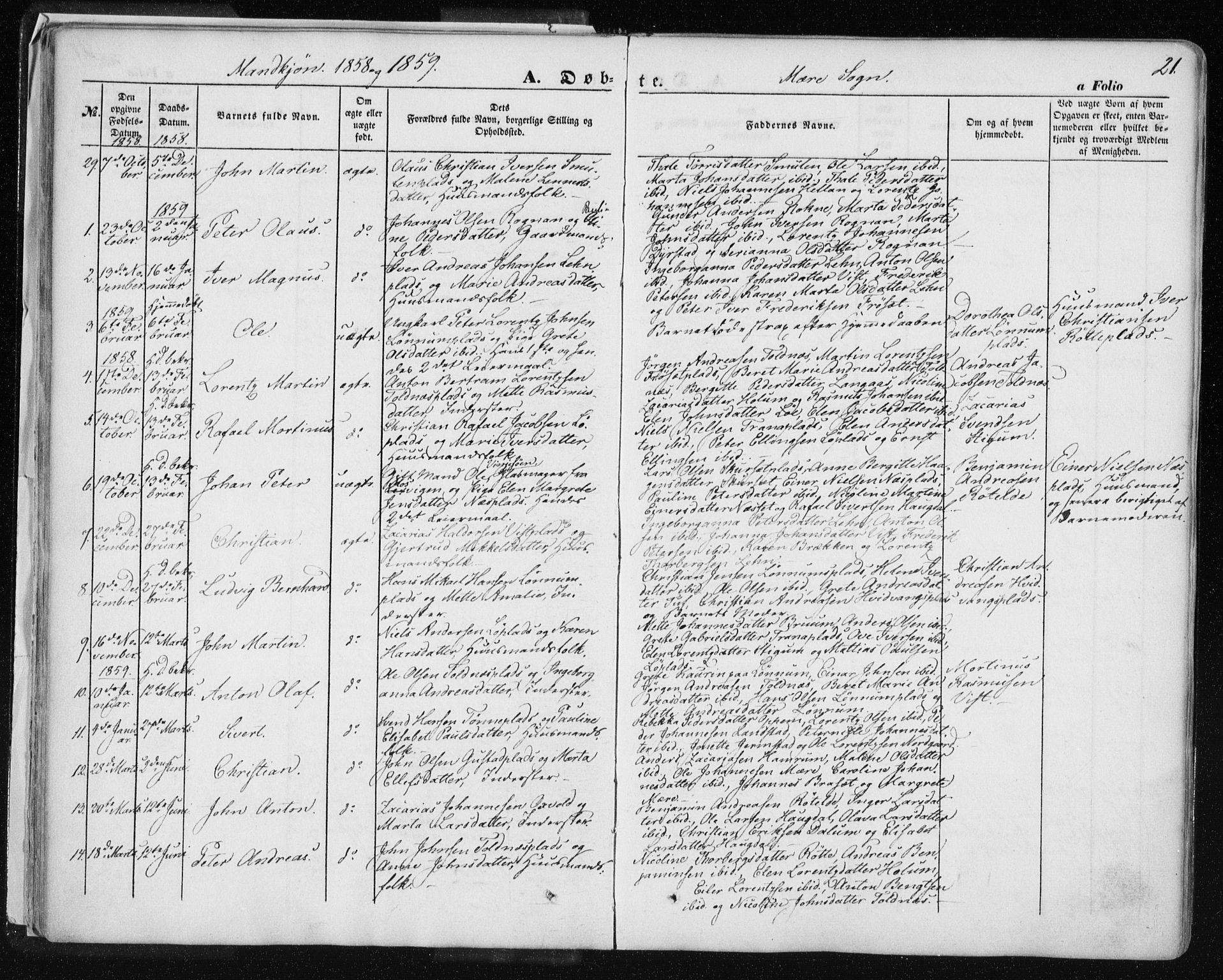 SAT, Ministerialprotokoller, klokkerbøker og fødselsregistre - Nord-Trøndelag, 735/L0342: Ministerialbok nr. 735A07 /1, 1849-1862, s. 21