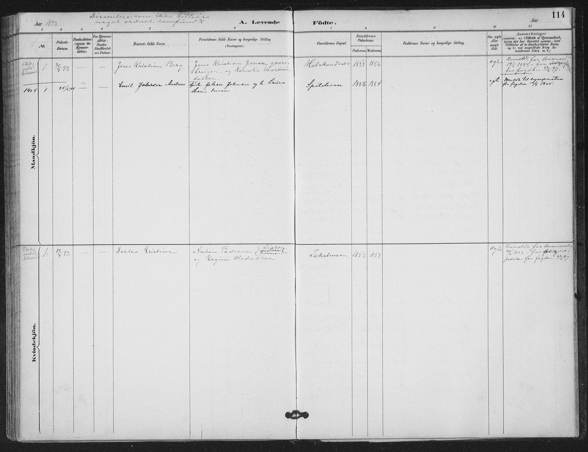 SAT, Ministerialprotokoller, klokkerbøker og fødselsregistre - Nordland, 843/L0628: Ministerialbok nr. 843A03, 1889-1907, s. 114