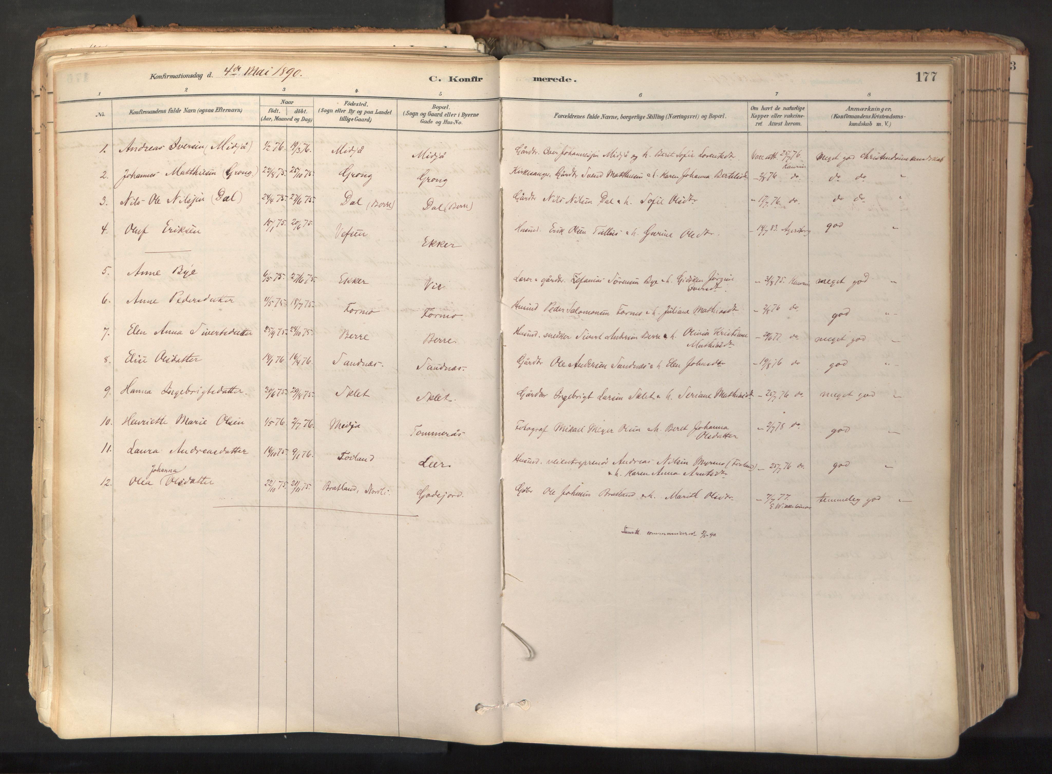 SAT, Ministerialprotokoller, klokkerbøker og fødselsregistre - Nord-Trøndelag, 758/L0519: Ministerialbok nr. 758A04, 1880-1926, s. 177