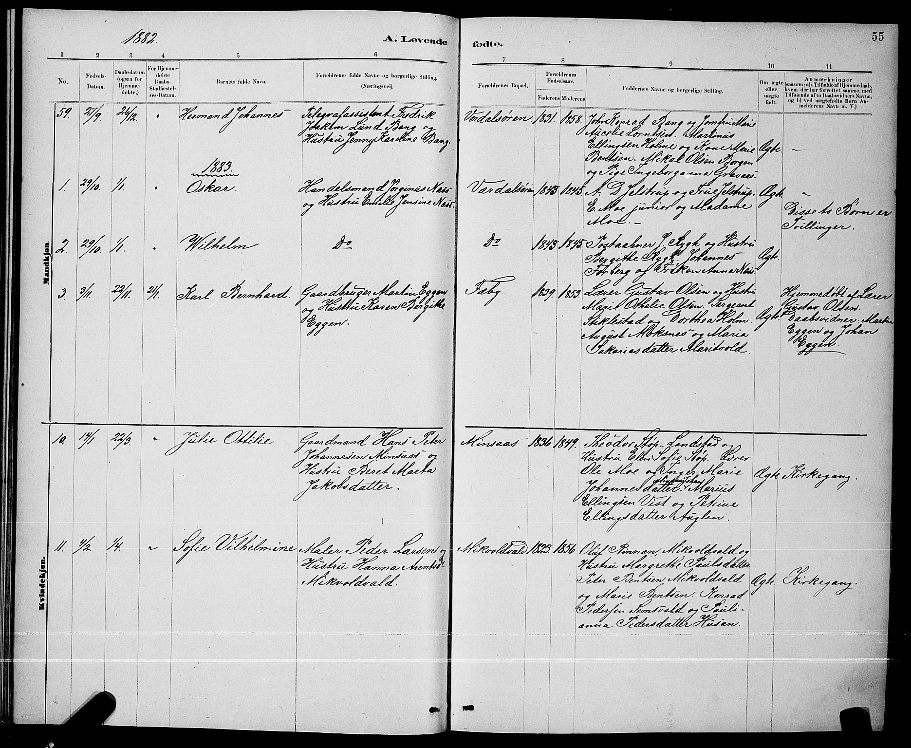 SAT, Ministerialprotokoller, klokkerbøker og fødselsregistre - Nord-Trøndelag, 723/L0256: Klokkerbok nr. 723C04, 1879-1890, s. 55
