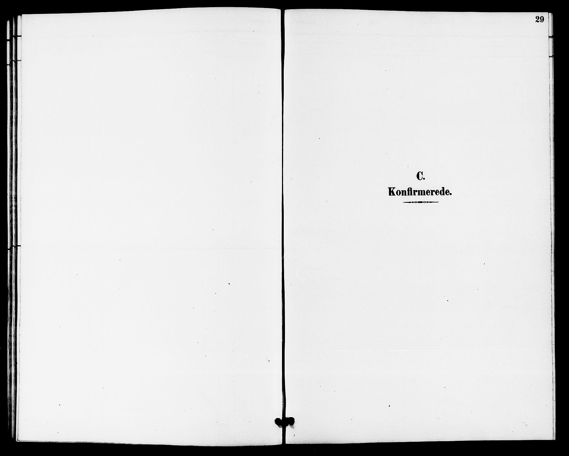 SAKO, Hjartdal kirkebøker, G/Gb/L0003: Klokkerbok nr. II 3, 1884-1899, s. 29