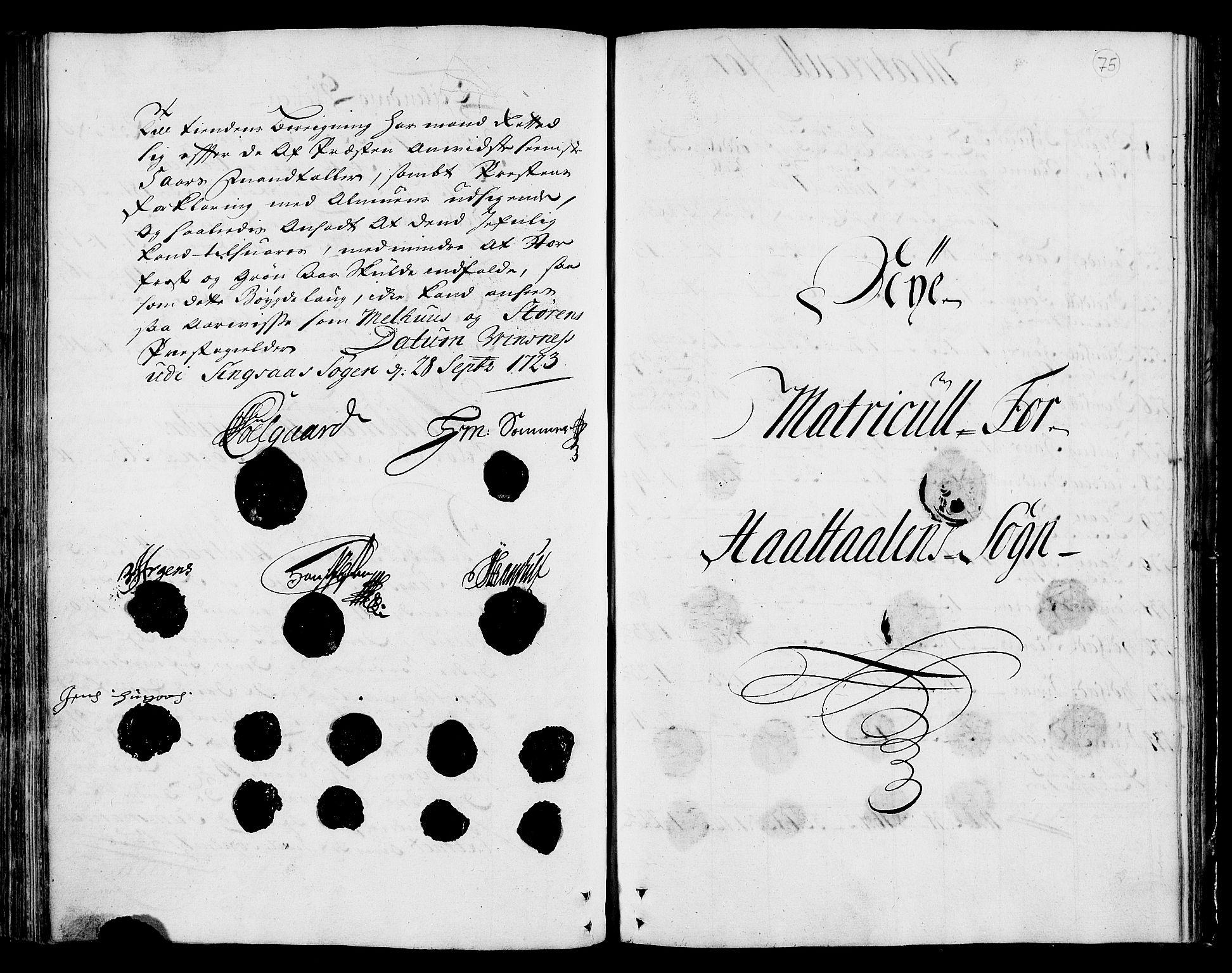 RA, Rentekammeret inntil 1814, Realistisk ordnet avdeling, N/Nb/Nbf/L0159: Gauldal matrikkelprotokoll, 1723, s. 74b-75a