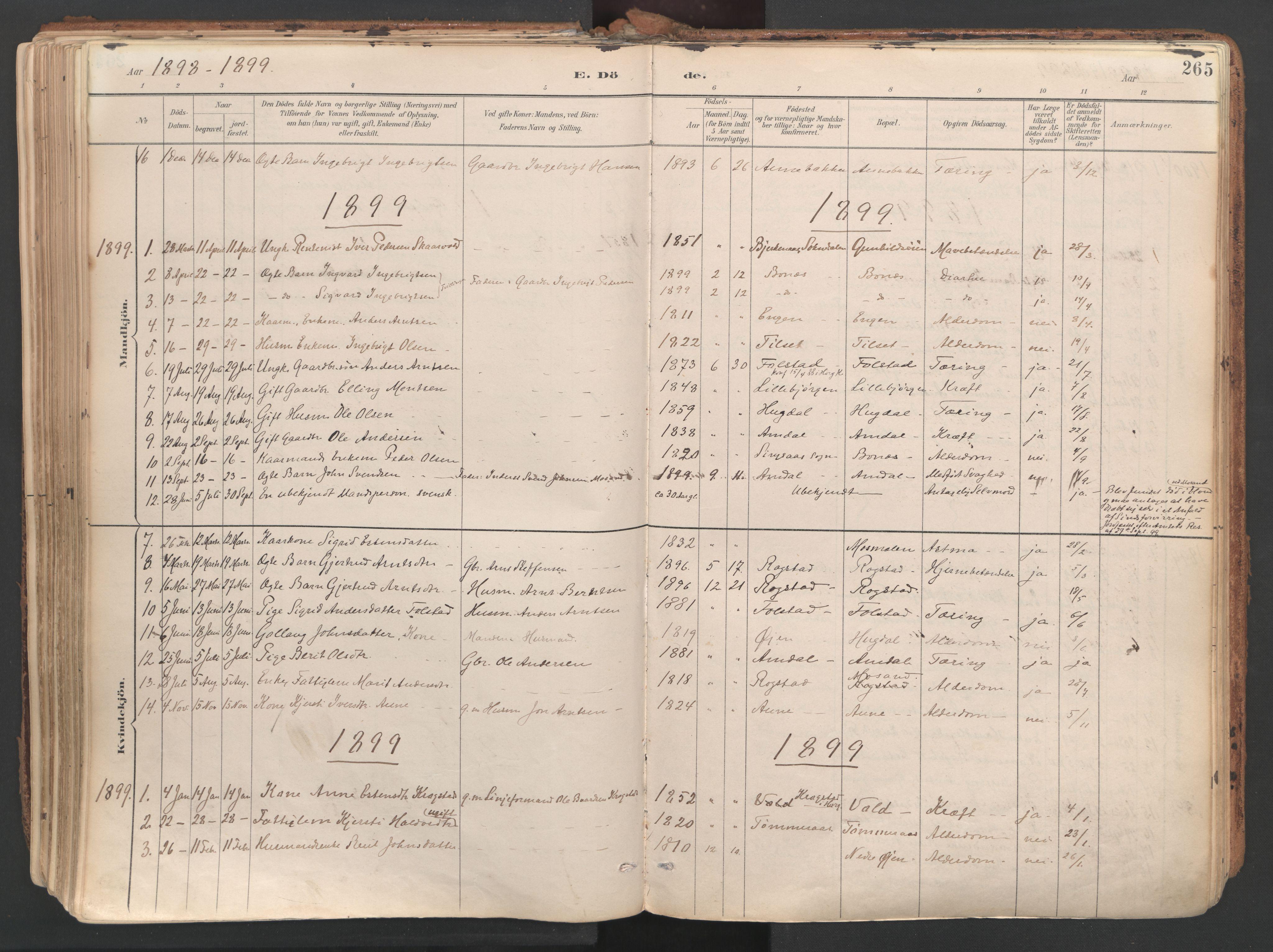 SAT, Ministerialprotokoller, klokkerbøker og fødselsregistre - Sør-Trøndelag, 687/L1004: Ministerialbok nr. 687A10, 1891-1923, s. 265