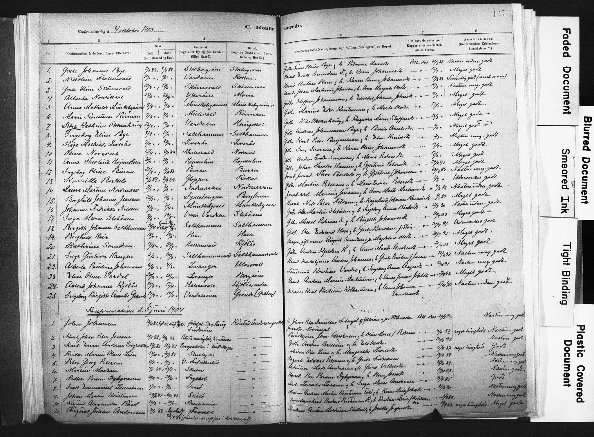SAT, Ministerialprotokoller, klokkerbøker og fødselsregistre - Nord-Trøndelag, 721/L0207: Ministerialbok nr. 721A02, 1880-1911, s. 147