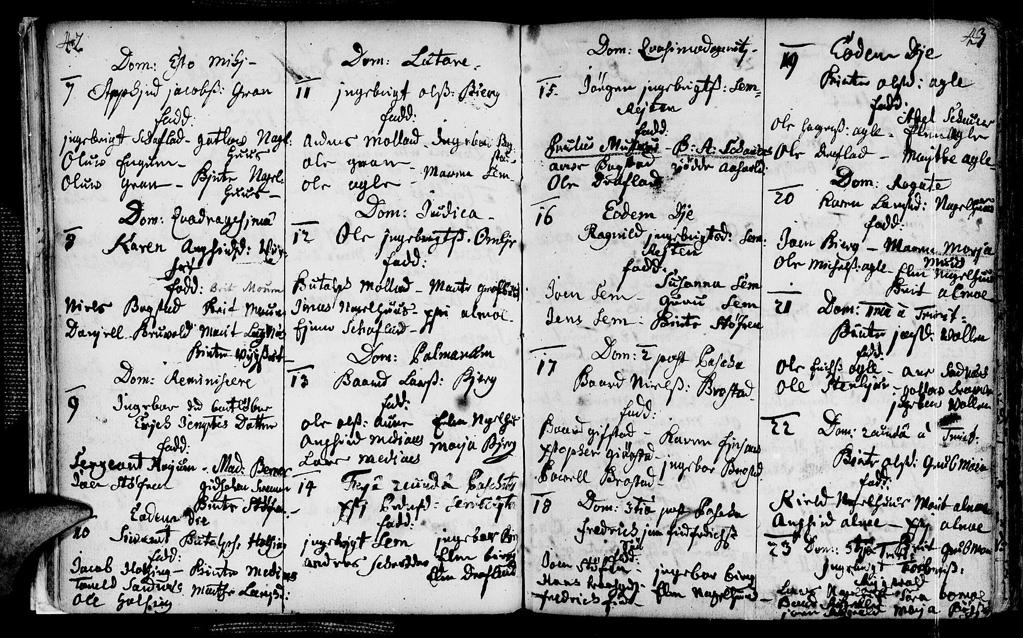 SAT, Ministerialprotokoller, klokkerbøker og fødselsregistre - Nord-Trøndelag, 749/L0467: Ministerialbok nr. 749A01, 1733-1787, s. 42-43