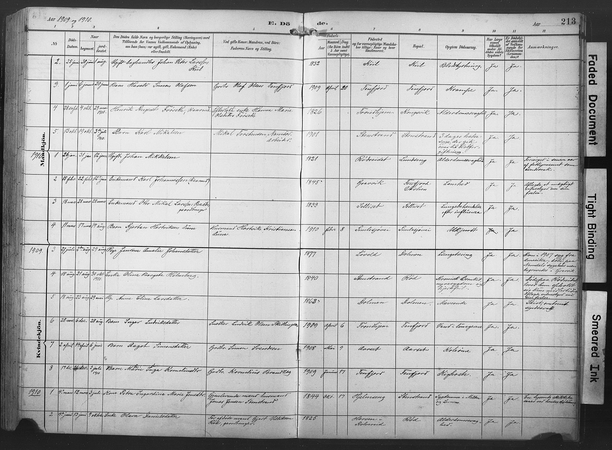 SAT, Ministerialprotokoller, klokkerbøker og fødselsregistre - Nord-Trøndelag, 789/L0706: Klokkerbok nr. 789C01, 1888-1931, s. 213