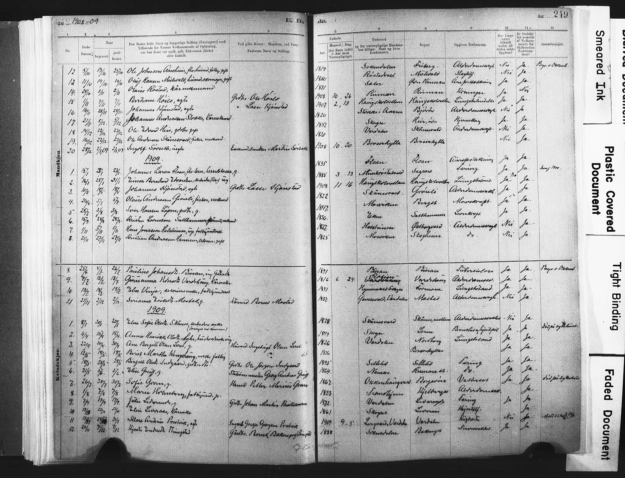 SAT, Ministerialprotokoller, klokkerbøker og fødselsregistre - Nord-Trøndelag, 721/L0207: Ministerialbok nr. 721A02, 1880-1911, s. 249