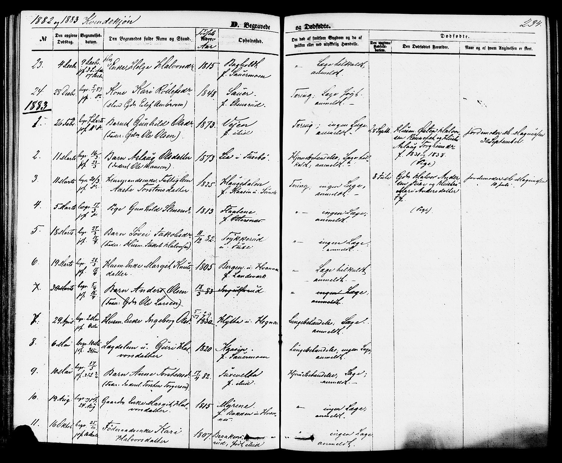 SAKO, Sauherad kirkebøker, F/Fa/L0008: Ministerialbok nr. I 8, 1873-1886, s. 234