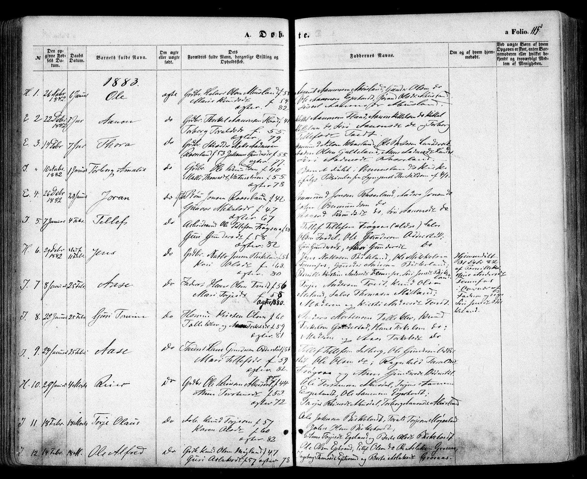 SAK, Evje sokneprestkontor, F/Fa/Faa/L0006: Ministerialbok nr. A 6, 1866-1884, s. 115