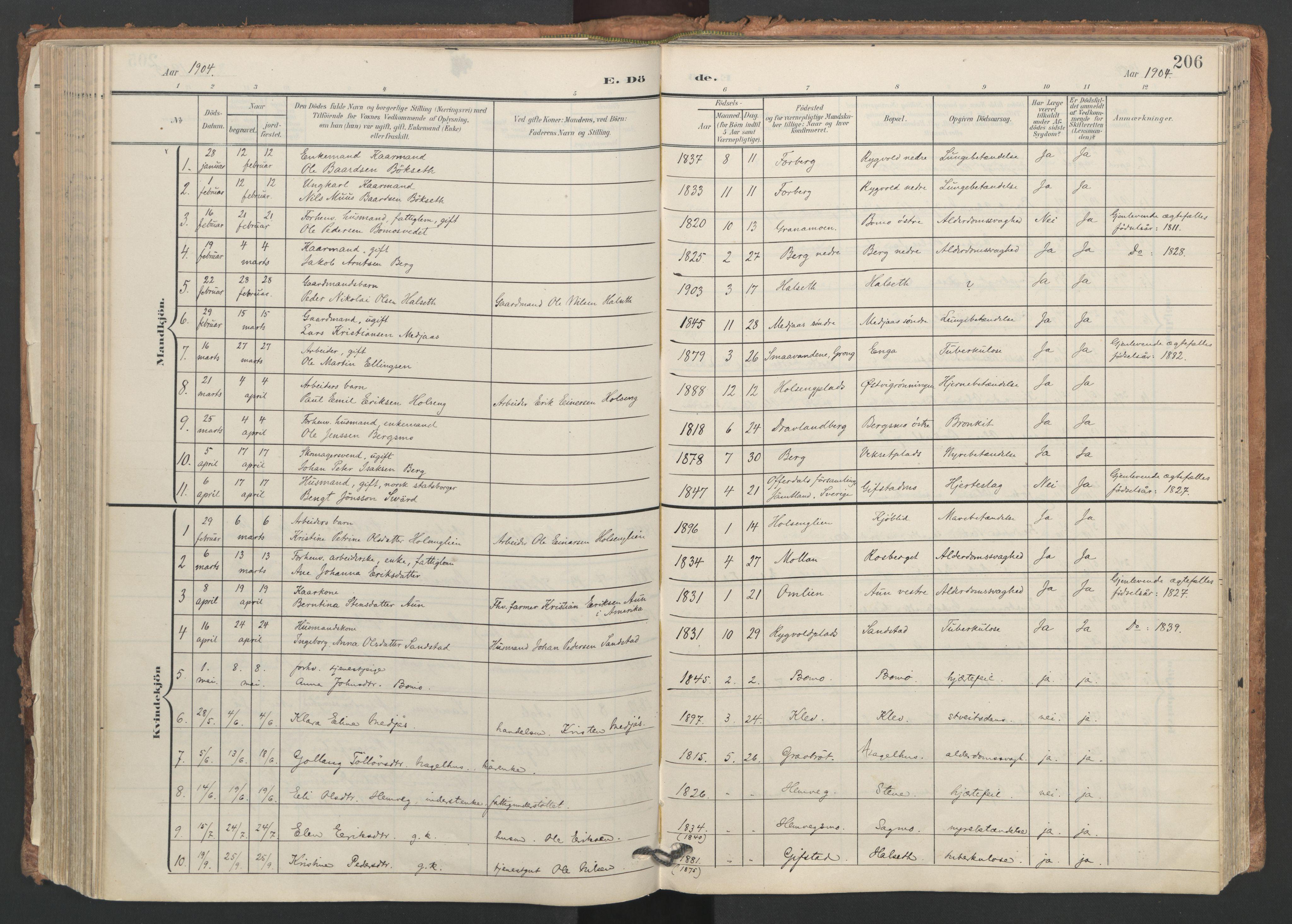 SAT, Ministerialprotokoller, klokkerbøker og fødselsregistre - Nord-Trøndelag, 749/L0477: Ministerialbok nr. 749A11, 1902-1927, s. 206