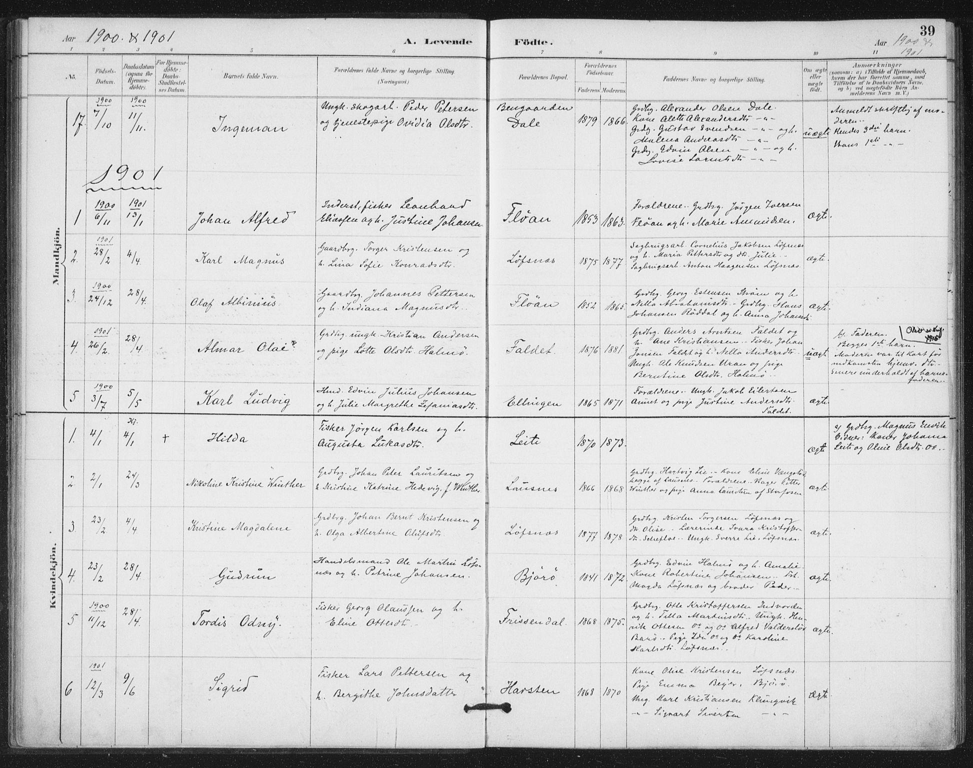 SAT, Ministerialprotokoller, klokkerbøker og fødselsregistre - Nord-Trøndelag, 772/L0603: Ministerialbok nr. 772A01, 1885-1912, s. 39