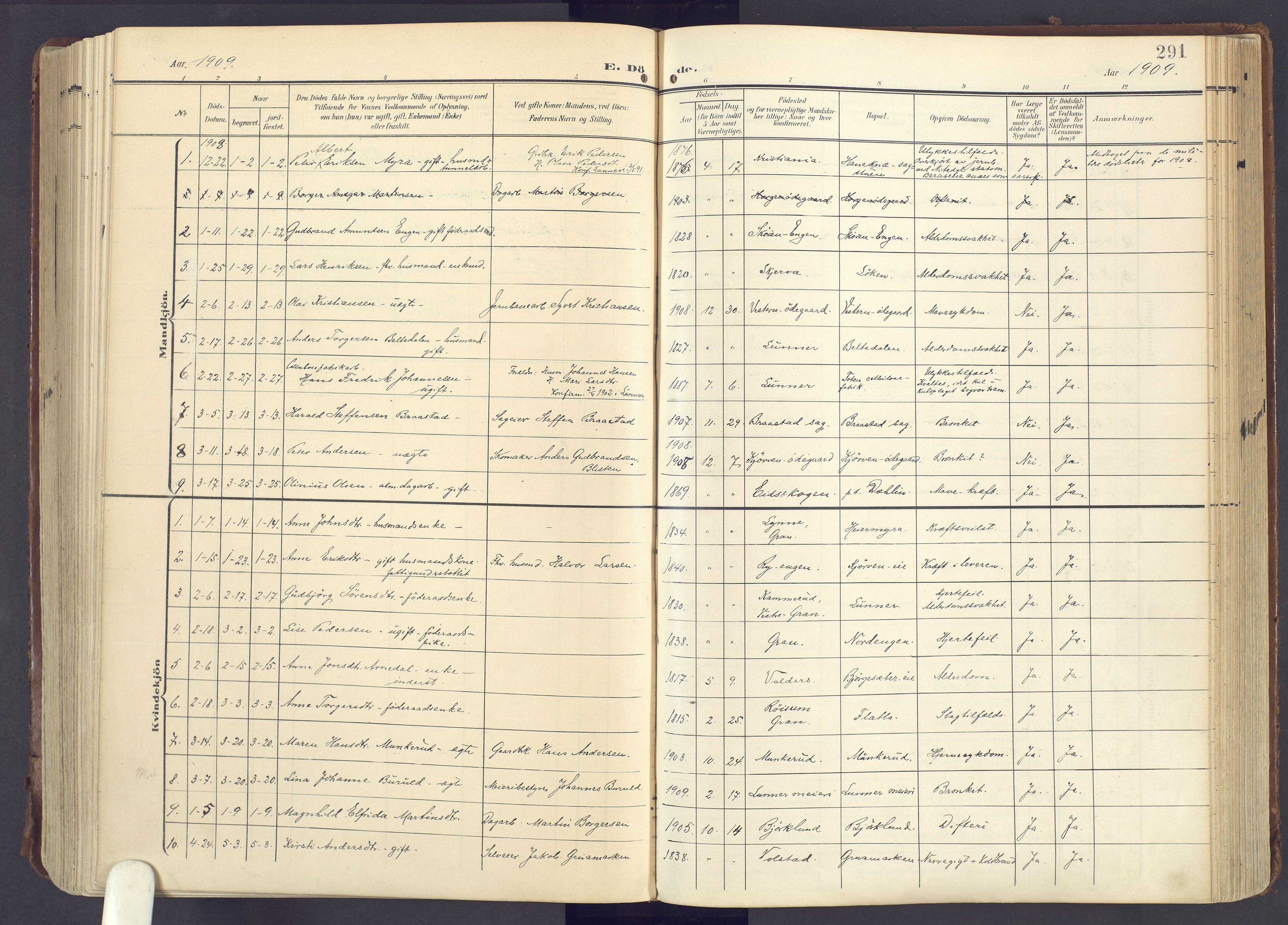 SAH, Lunner prestekontor, H/Ha/Haa/L0001: Ministerialbok nr. 1, 1907-1922, s. 291