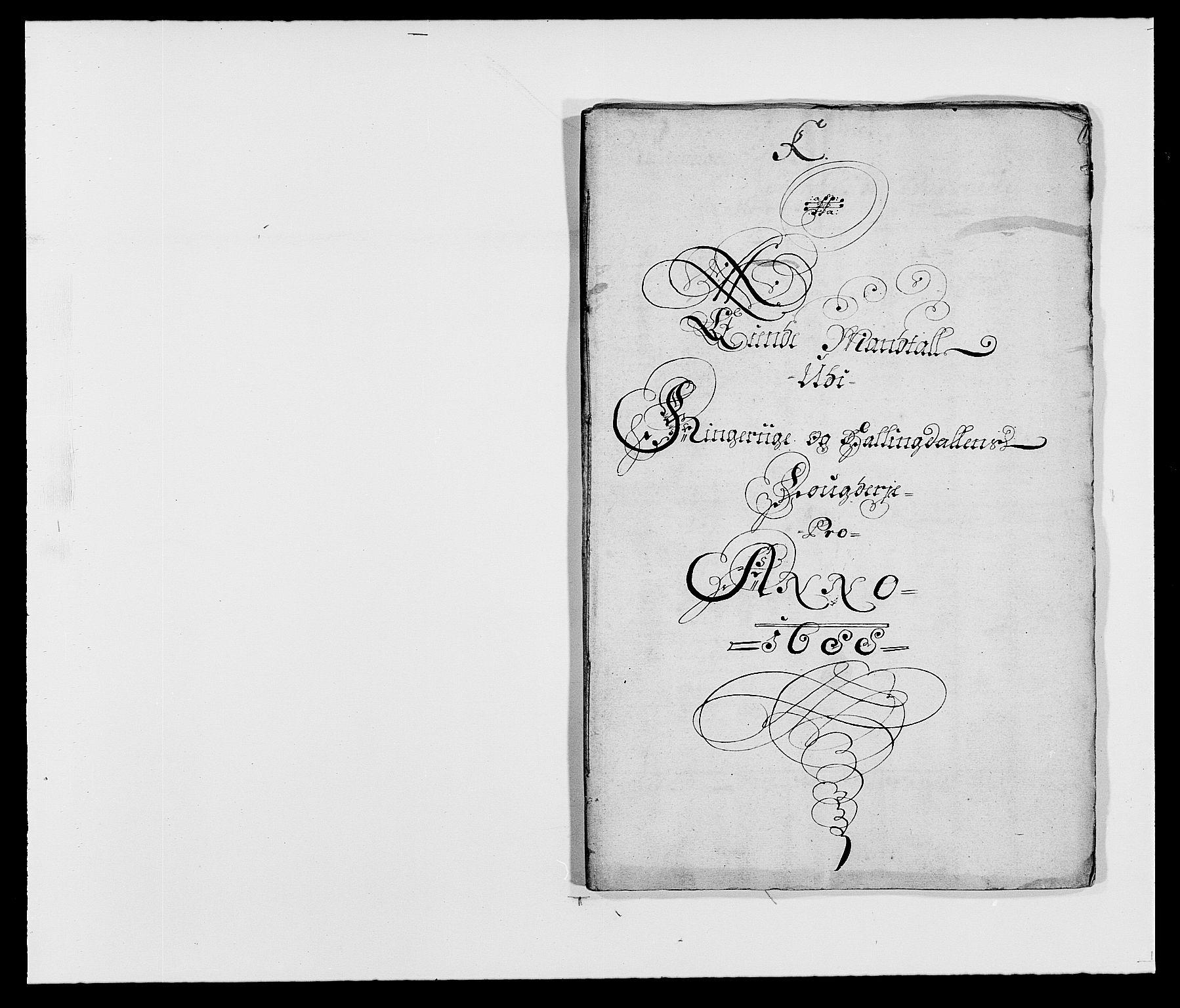 RA, Rentekammeret inntil 1814, Reviderte regnskaper, Fogderegnskap, R21/L1447: Fogderegnskap Ringerike og Hallingdal, 1687-1689, s. 215