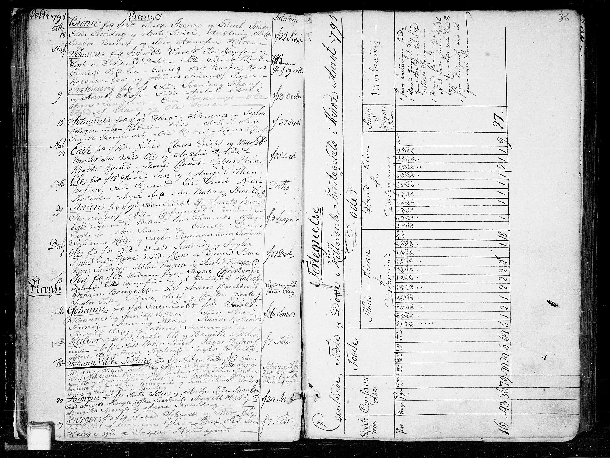 SAKO, Heddal kirkebøker, F/Fa/L0004: Ministerialbok nr. I 4, 1784-1814, s. 36