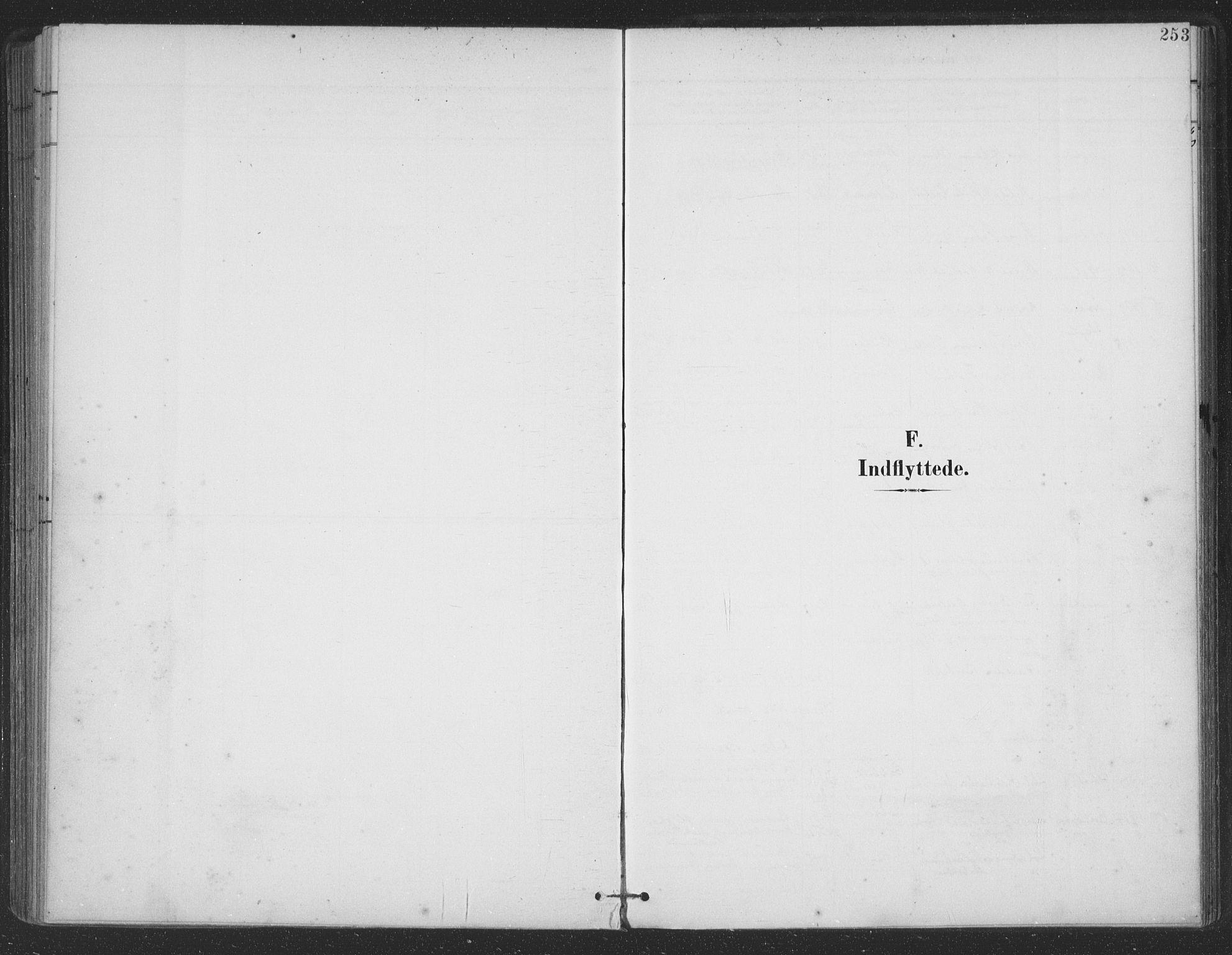 SAT, Ministerialprotokoller, klokkerbøker og fødselsregistre - Nordland, 863/L0899: Ministerialbok nr. 863A11, 1897-1906, s. 253