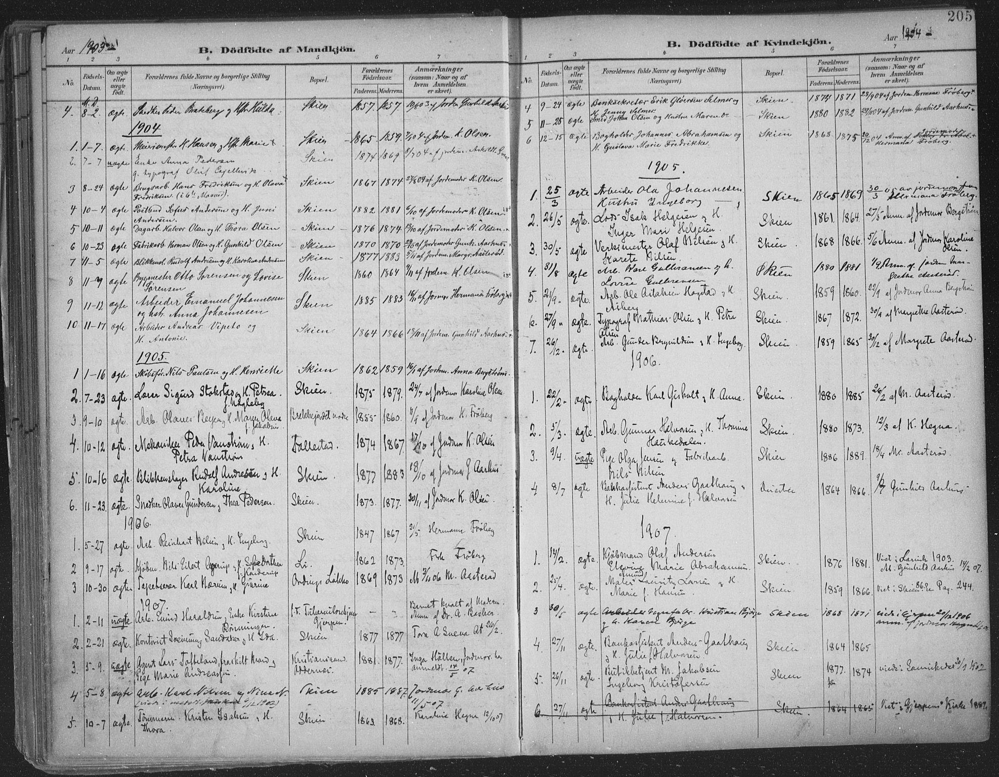 SAKO, Skien kirkebøker, F/Fa/L0011: Ministerialbok nr. 11, 1900-1907, s. 205