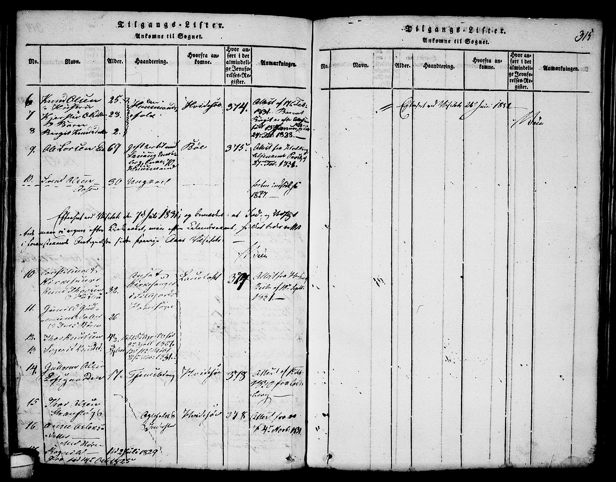 SAKO, Seljord kirkebøker, F/Fa/L0010: Ministerialbok nr. I 10, 1815-1831, s. 315