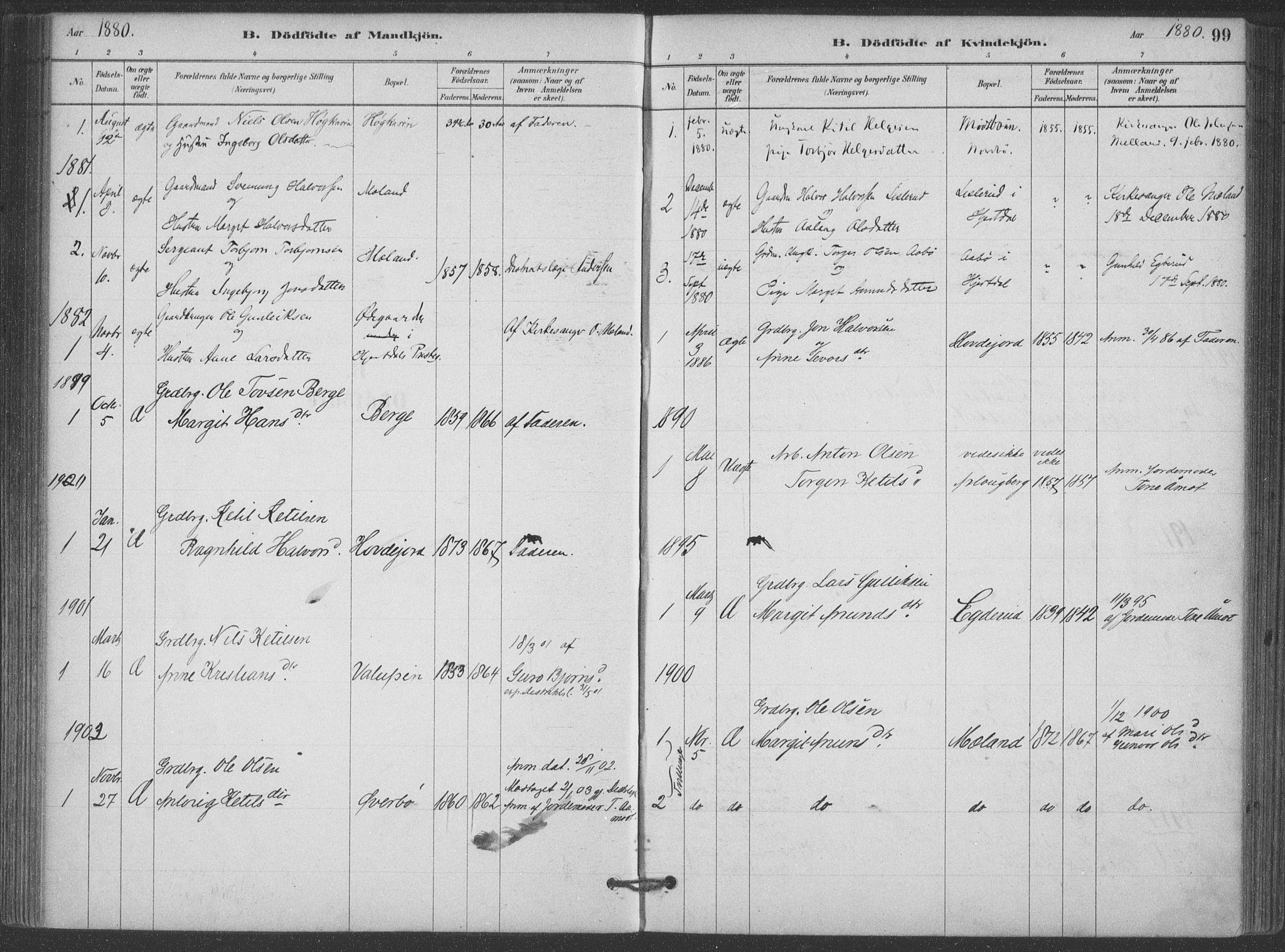 SAKO, Hjartdal kirkebøker, F/Fa/L0010: Ministerialbok nr. I 10, 1880-1929, s. 99