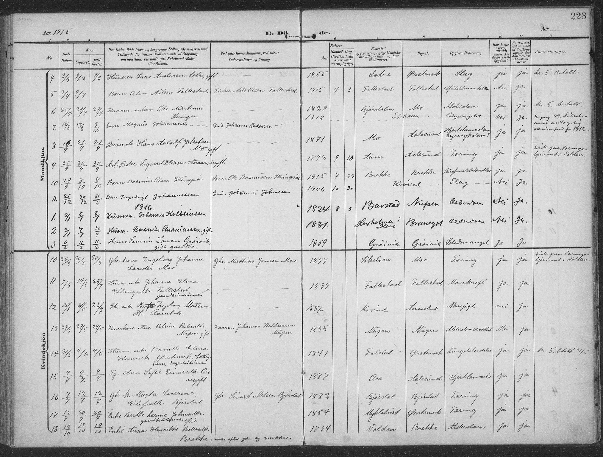 SAT, Ministerialprotokoller, klokkerbøker og fødselsregistre - Møre og Romsdal, 513/L0178: Ministerialbok nr. 513A05, 1906-1919, s. 228