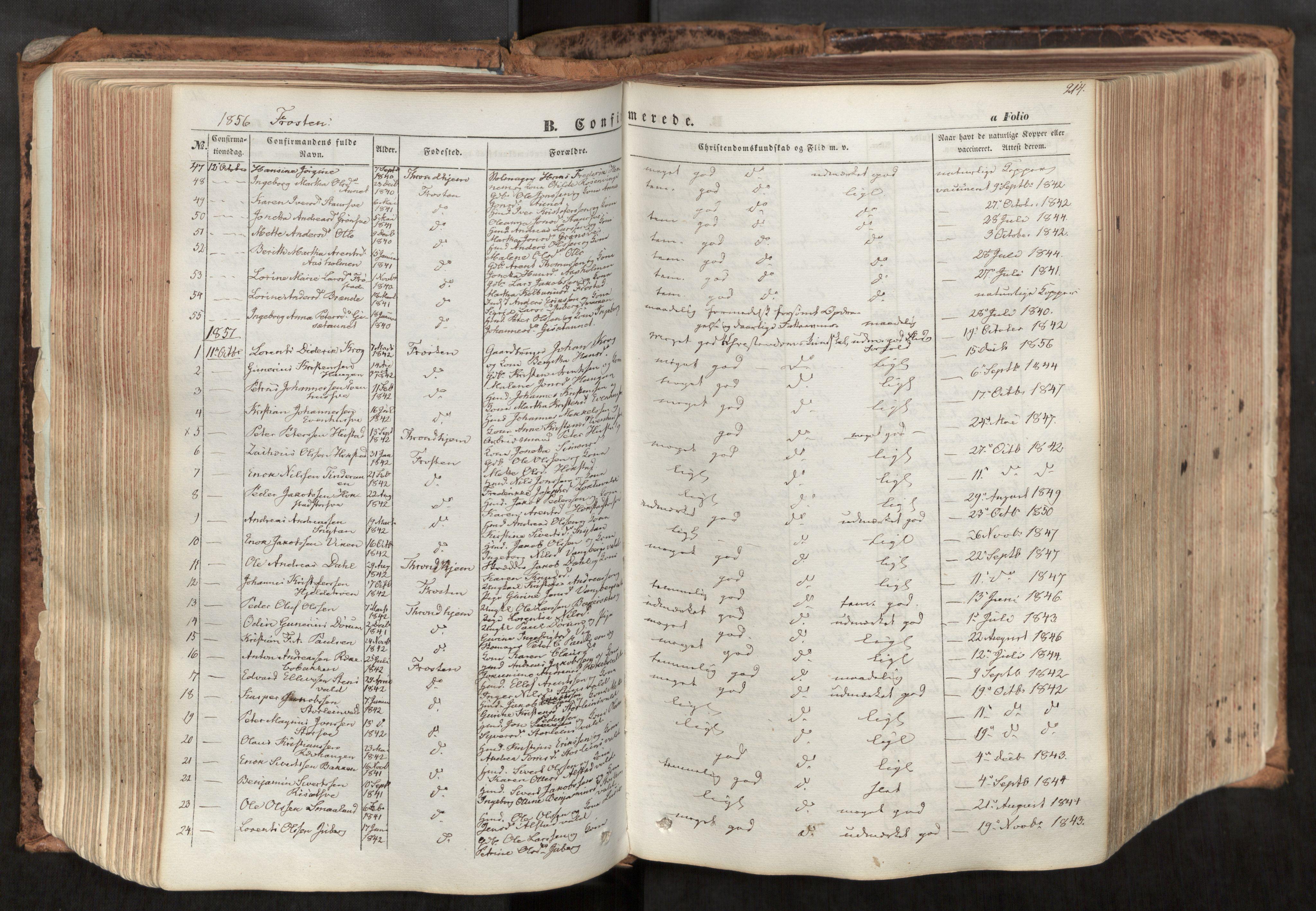 SAT, Ministerialprotokoller, klokkerbøker og fødselsregistre - Nord-Trøndelag, 713/L0116: Ministerialbok nr. 713A07, 1850-1877, s. 214