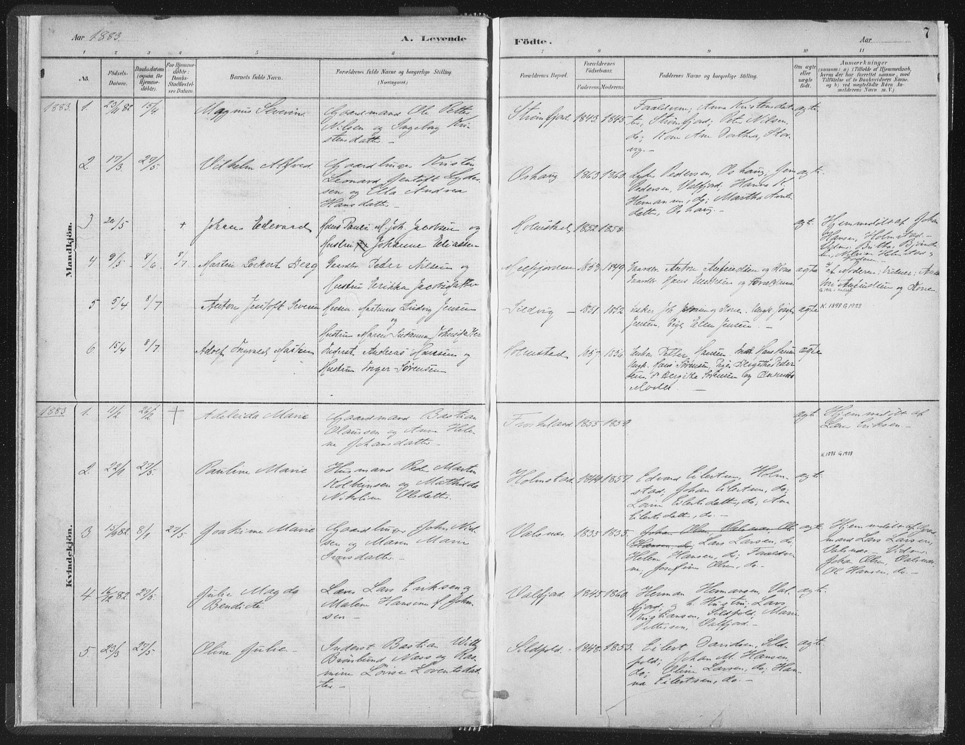 SAT, Ministerialprotokoller, klokkerbøker og fødselsregistre - Nordland, 890/L1286: Ministerialbok nr. 890A01, 1882-1902, s. 7