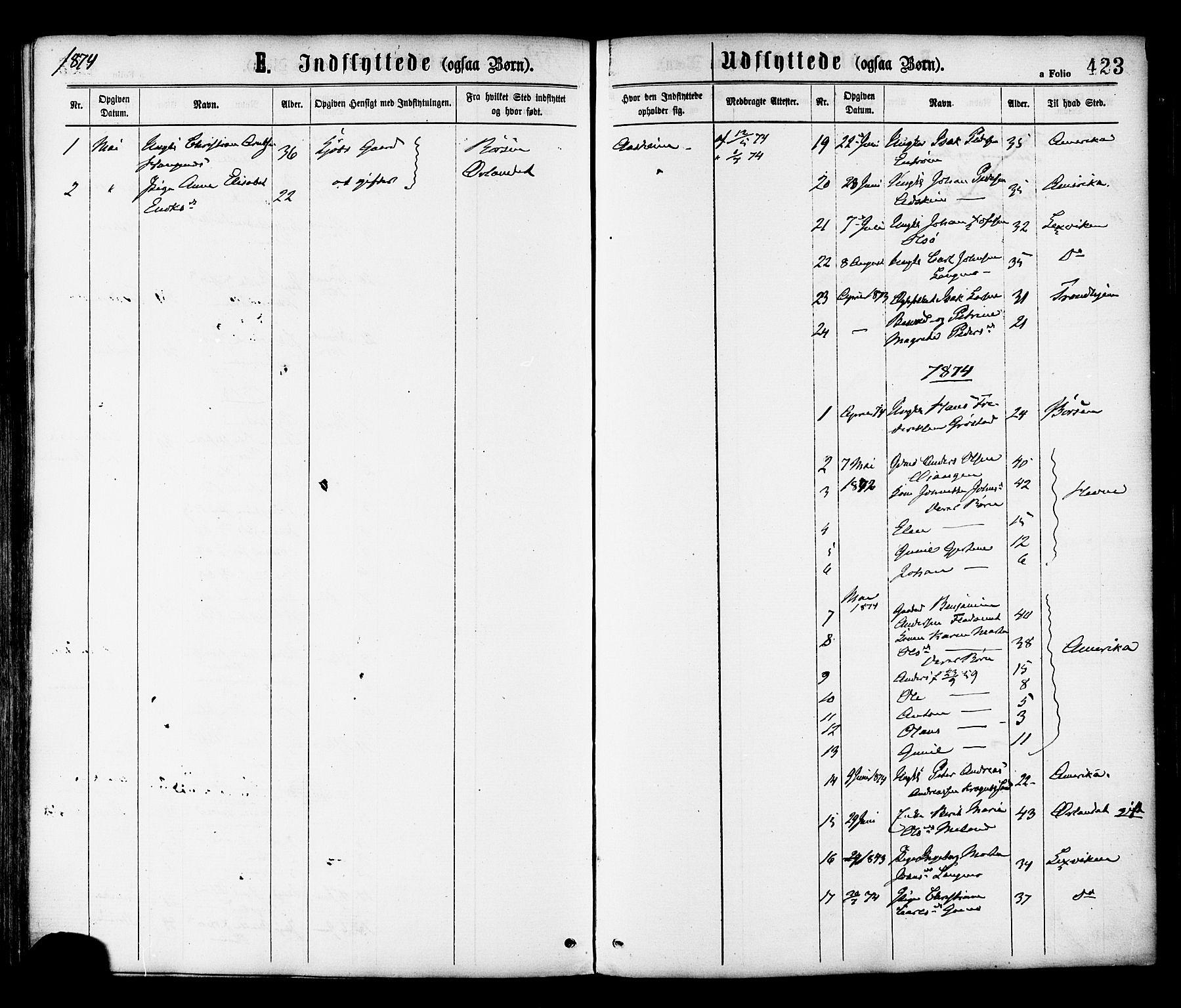 SAT, Ministerialprotokoller, klokkerbøker og fødselsregistre - Sør-Trøndelag, 646/L0613: Ministerialbok nr. 646A11, 1870-1884, s. 423
