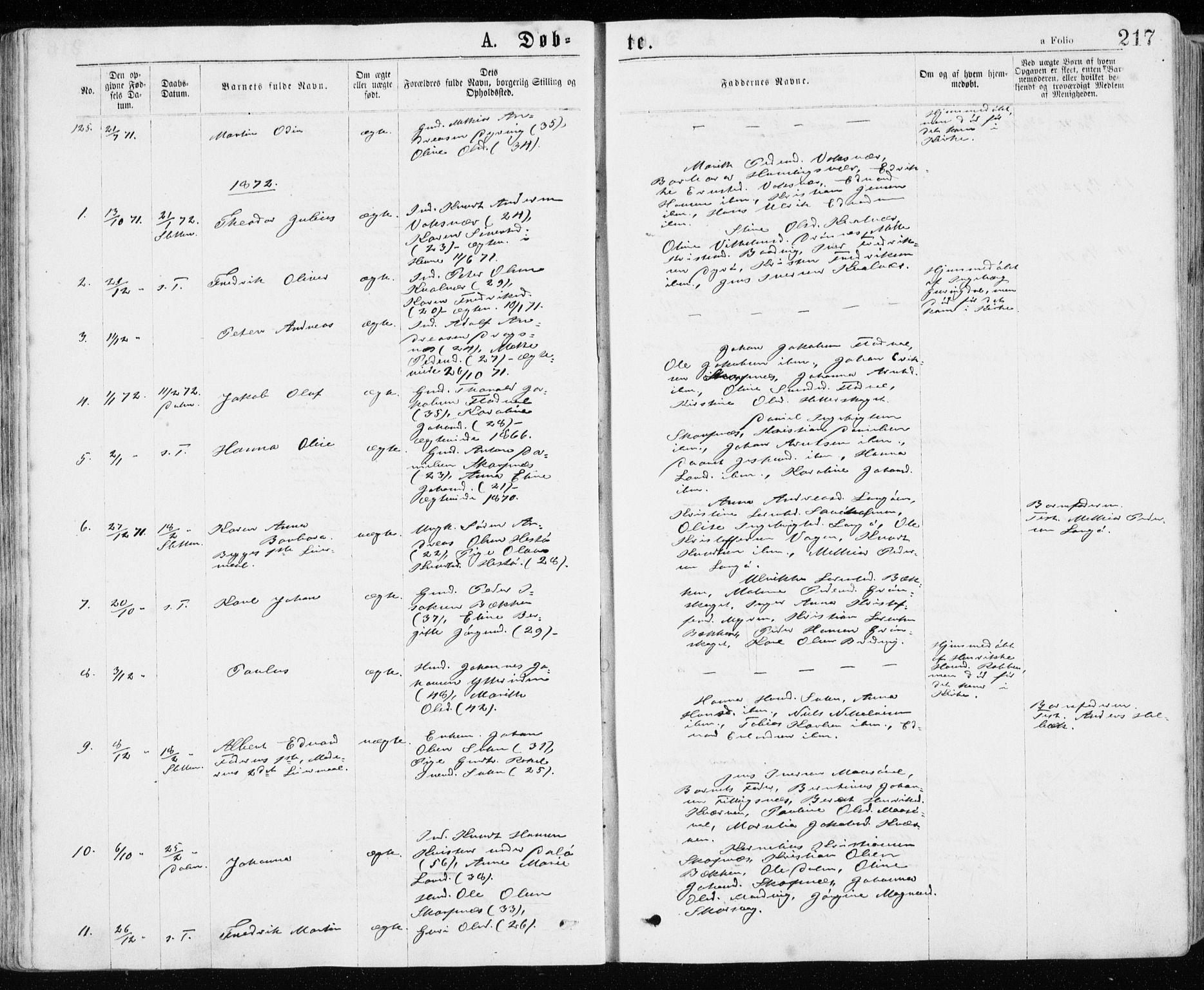 SAT, Ministerialprotokoller, klokkerbøker og fødselsregistre - Sør-Trøndelag, 640/L0576: Ministerialbok nr. 640A01, 1846-1876, s. 217