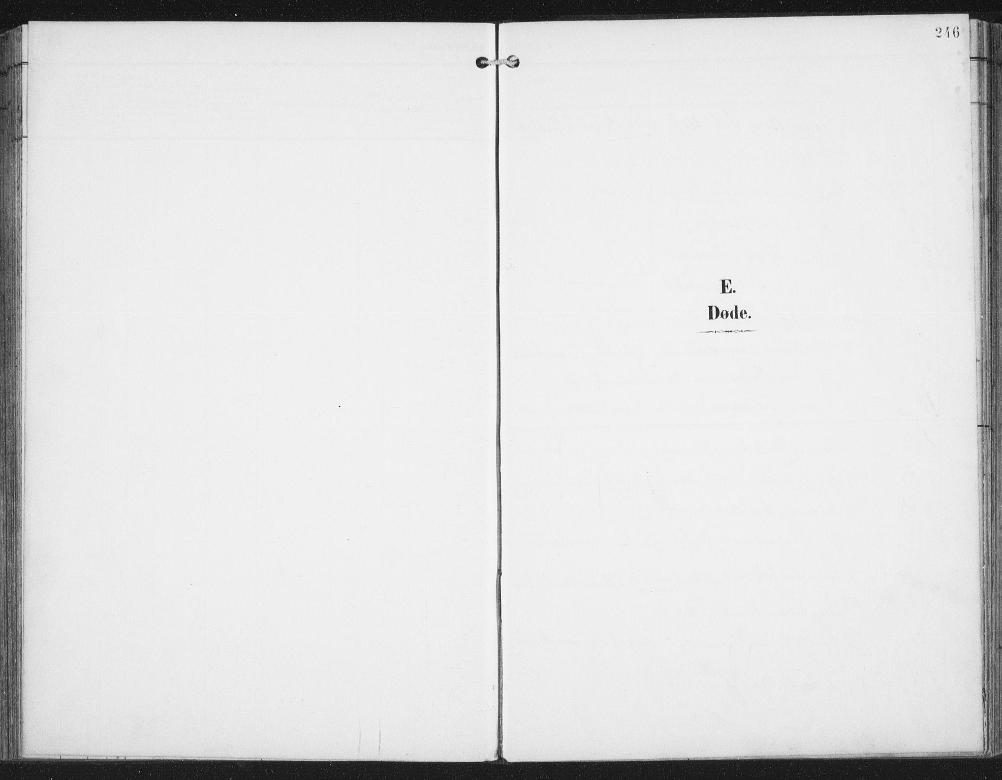 SAT, Ministerialprotokoller, klokkerbøker og fødselsregistre - Nordland, 876/L1098: Ministerialbok nr. 876A04, 1896-1915, s. 246