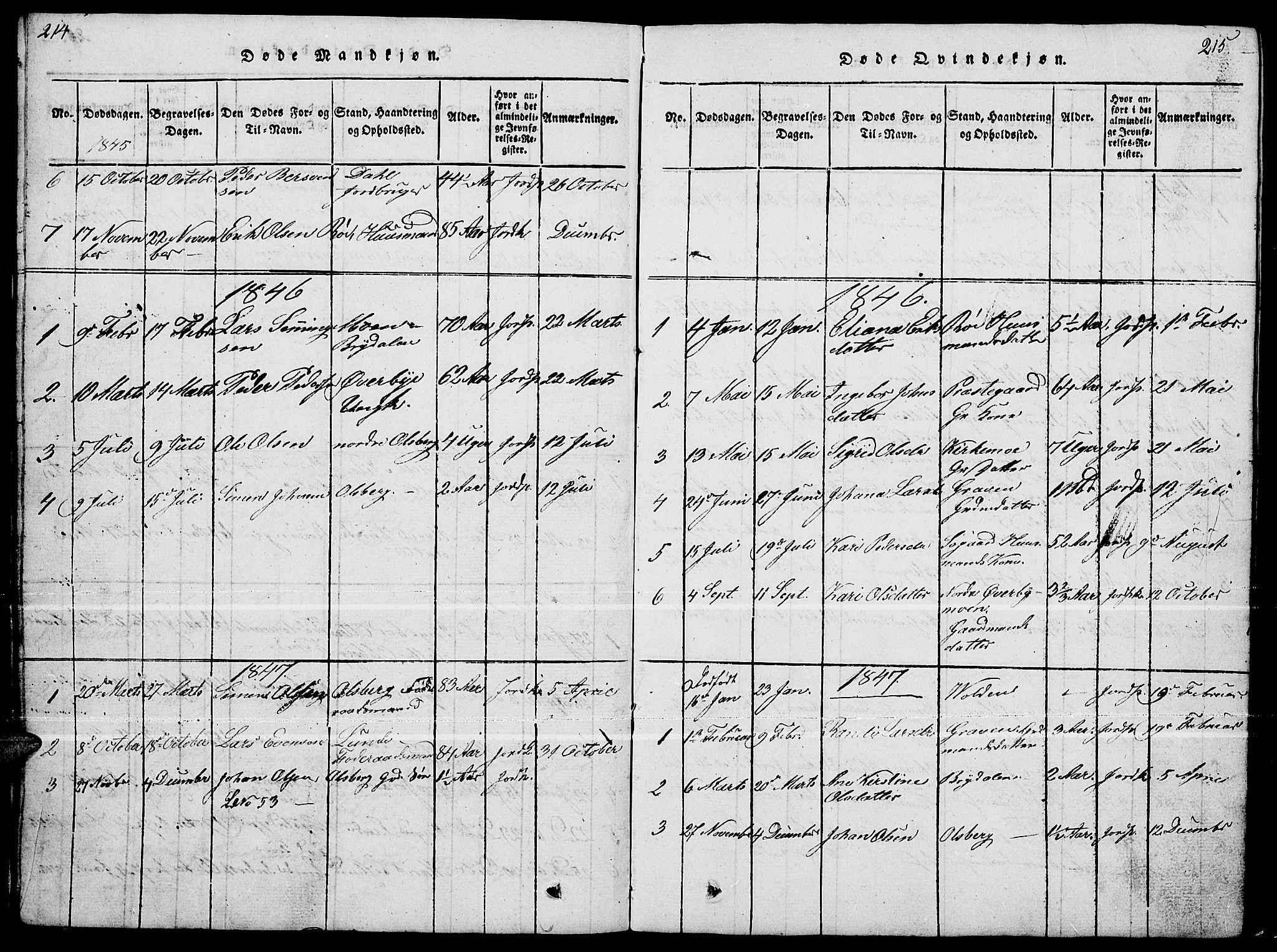 SAH, Tynset prestekontor, Klokkerbok nr. 4, 1814-1879, s. 214-215