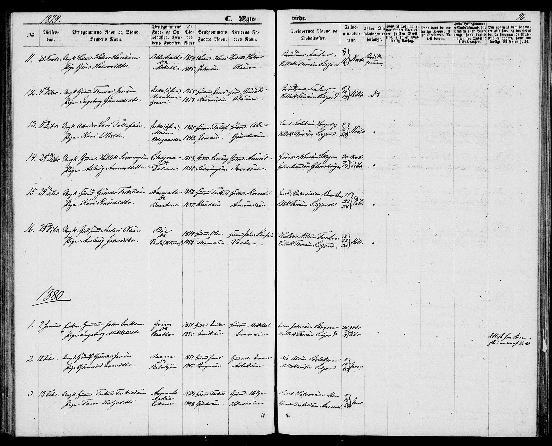 SAKO, Bø kirkebøker, G/Ga/L0004: Klokkerbok nr. 4, 1876-1882, s. 96