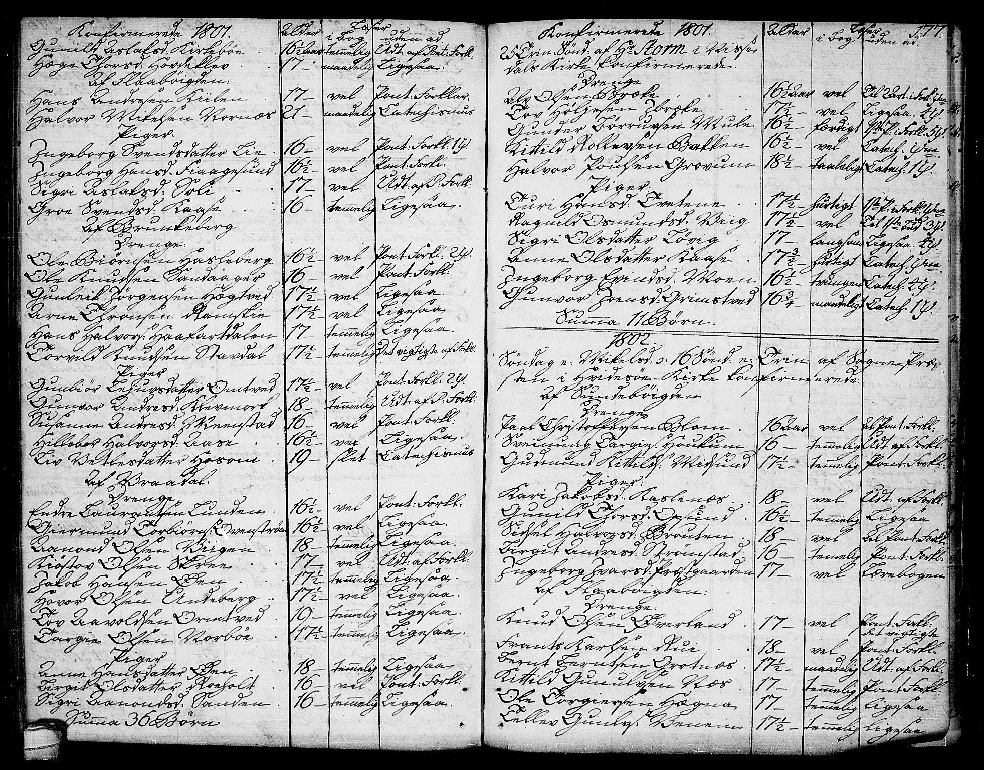 SAKO, Kviteseid kirkebøker, F/Fa/L0004: Ministerialbok nr. I 4, 1800-1814, s. 177