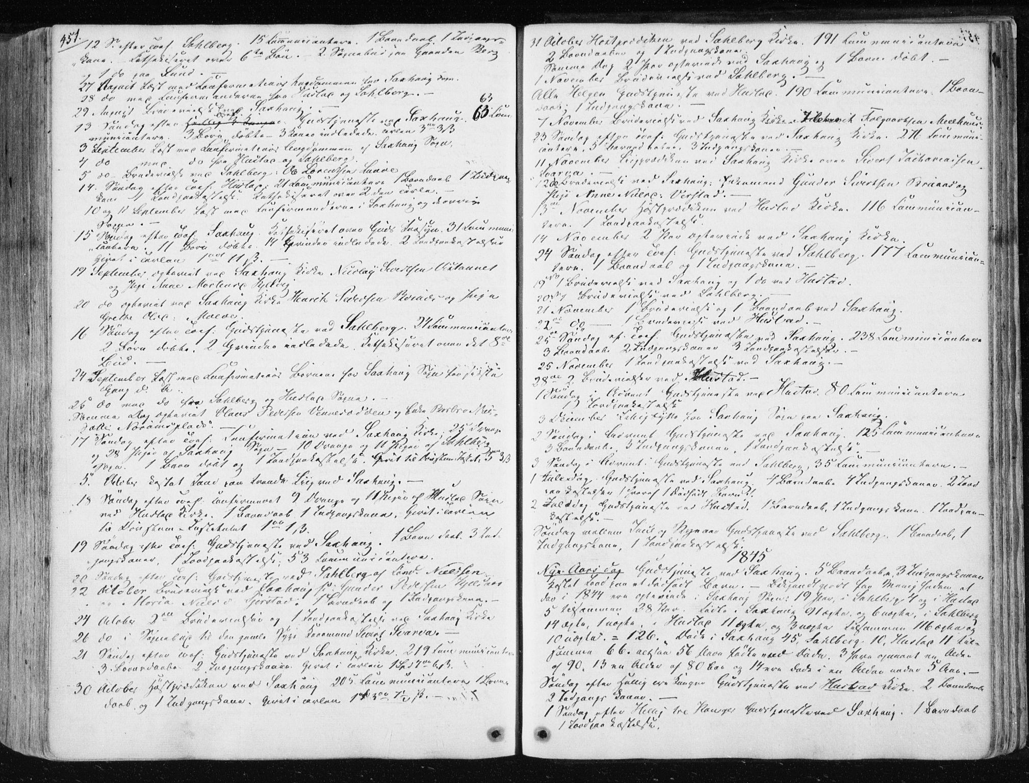 SAT, Ministerialprotokoller, klokkerbøker og fødselsregistre - Nord-Trøndelag, 730/L0280: Ministerialbok nr. 730A07 /1, 1840-1854, s. 451