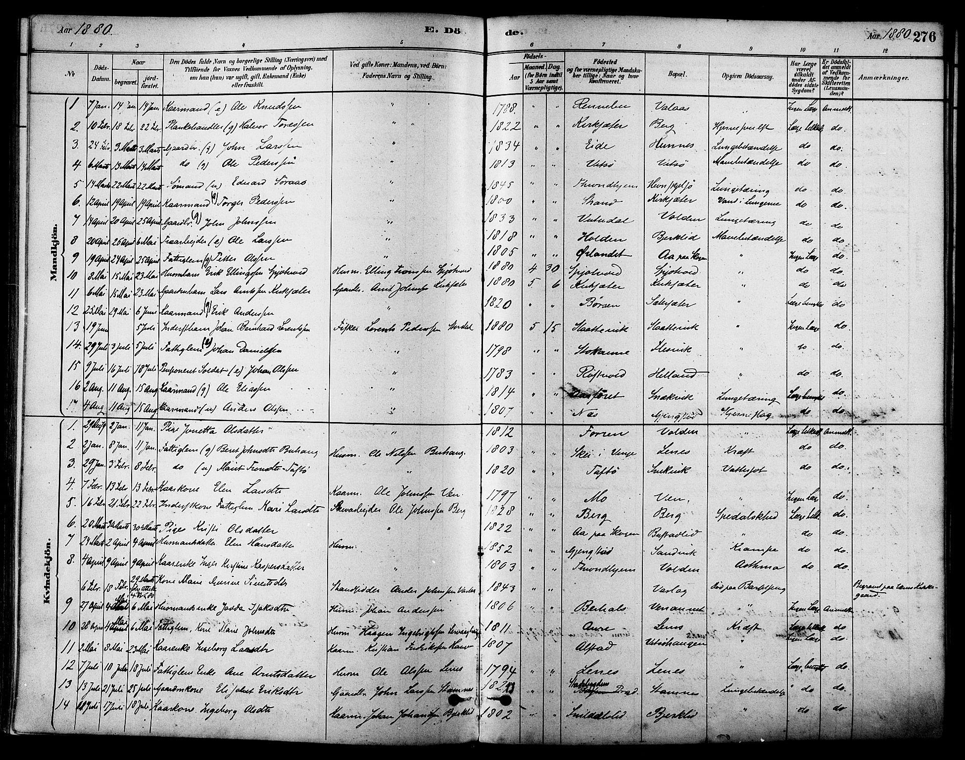 SAT, Ministerialprotokoller, klokkerbøker og fødselsregistre - Sør-Trøndelag, 630/L0496: Ministerialbok nr. 630A09, 1879-1895, s. 276