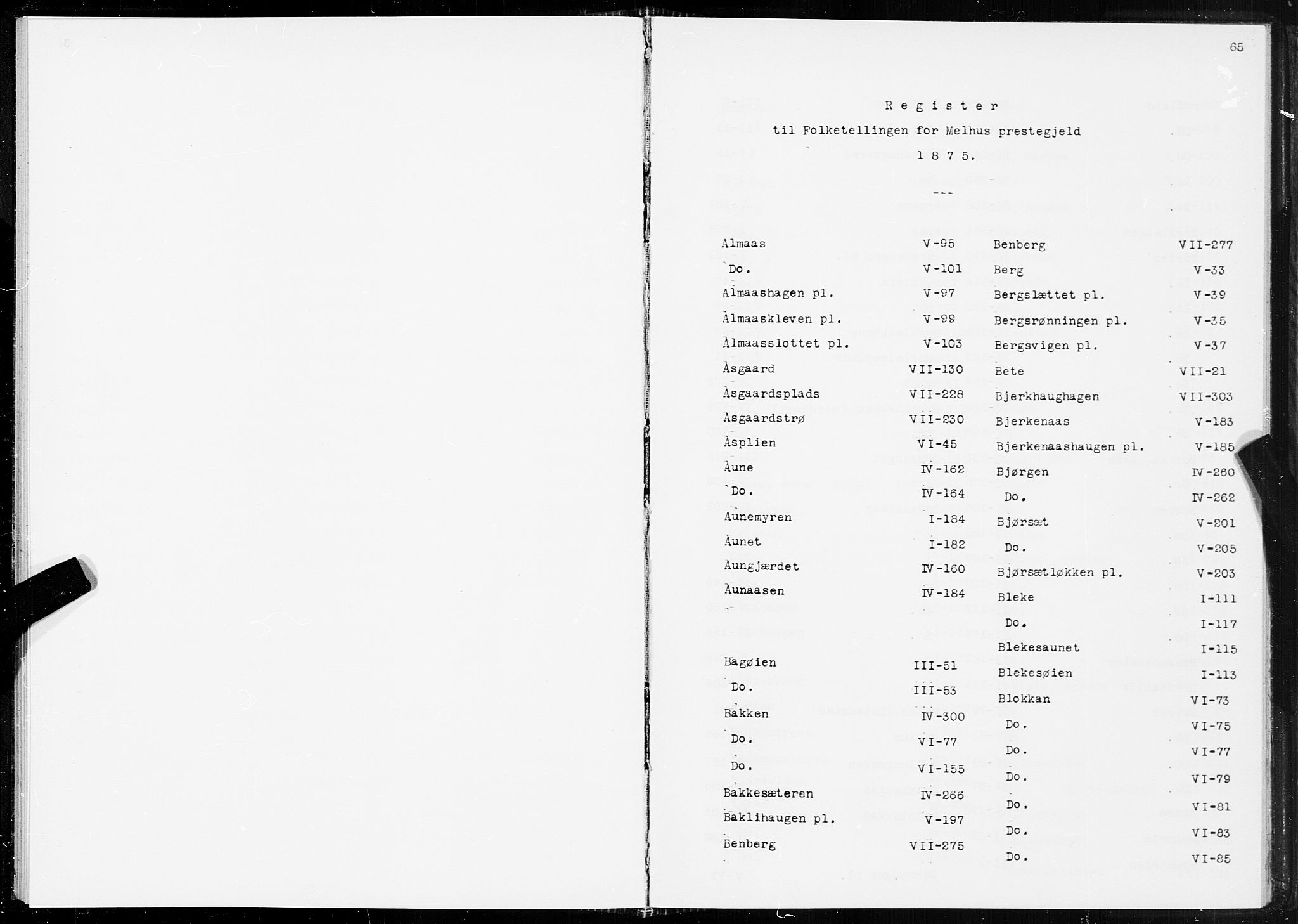 SAT, Folketelling 1875 for 1653P Melhus prestegjeld, 1875, s. 65