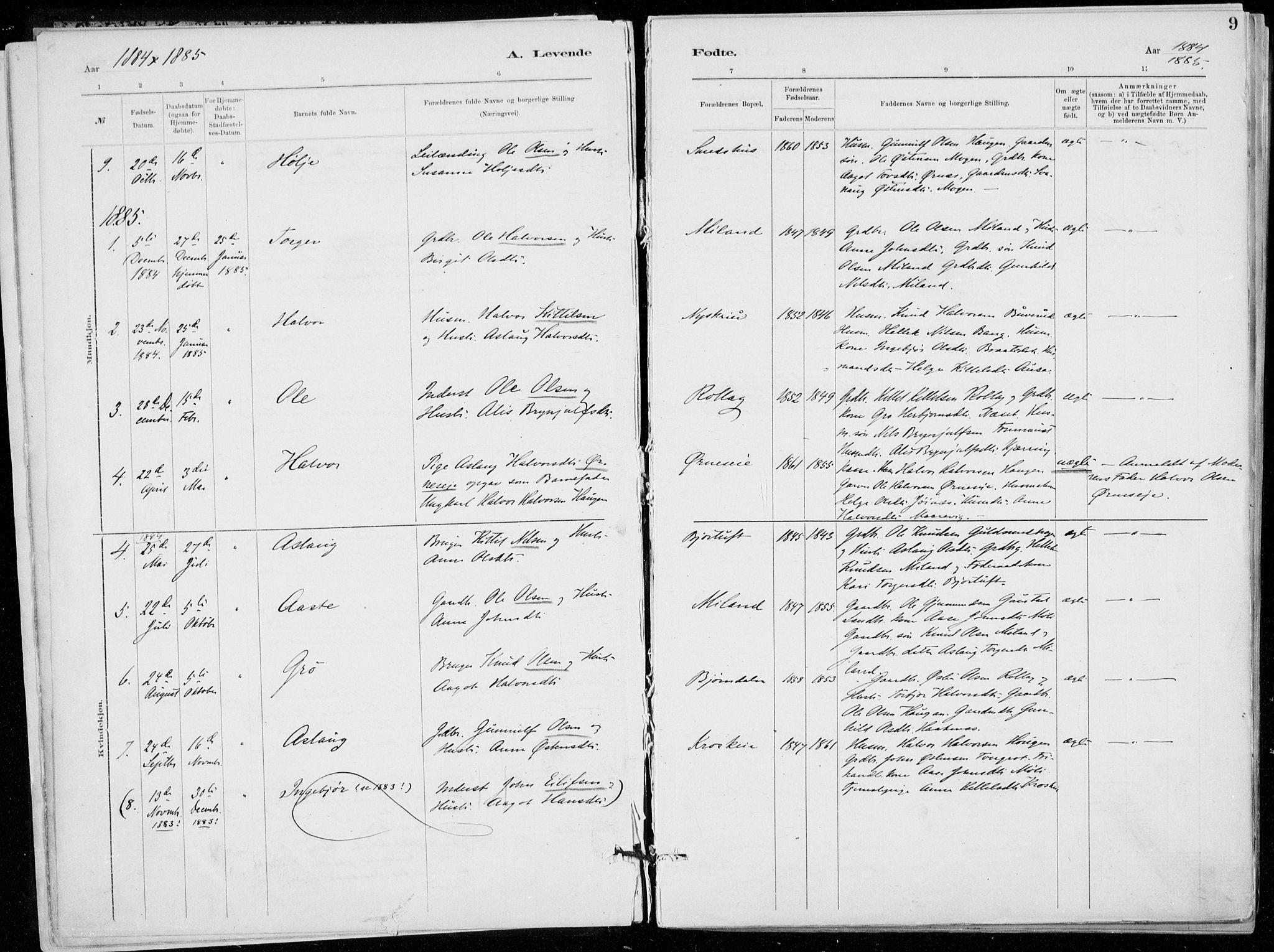 SAKO, Tinn kirkebøker, F/Fb/L0002: Ministerialbok nr. II 2, 1878-1917, s. 9