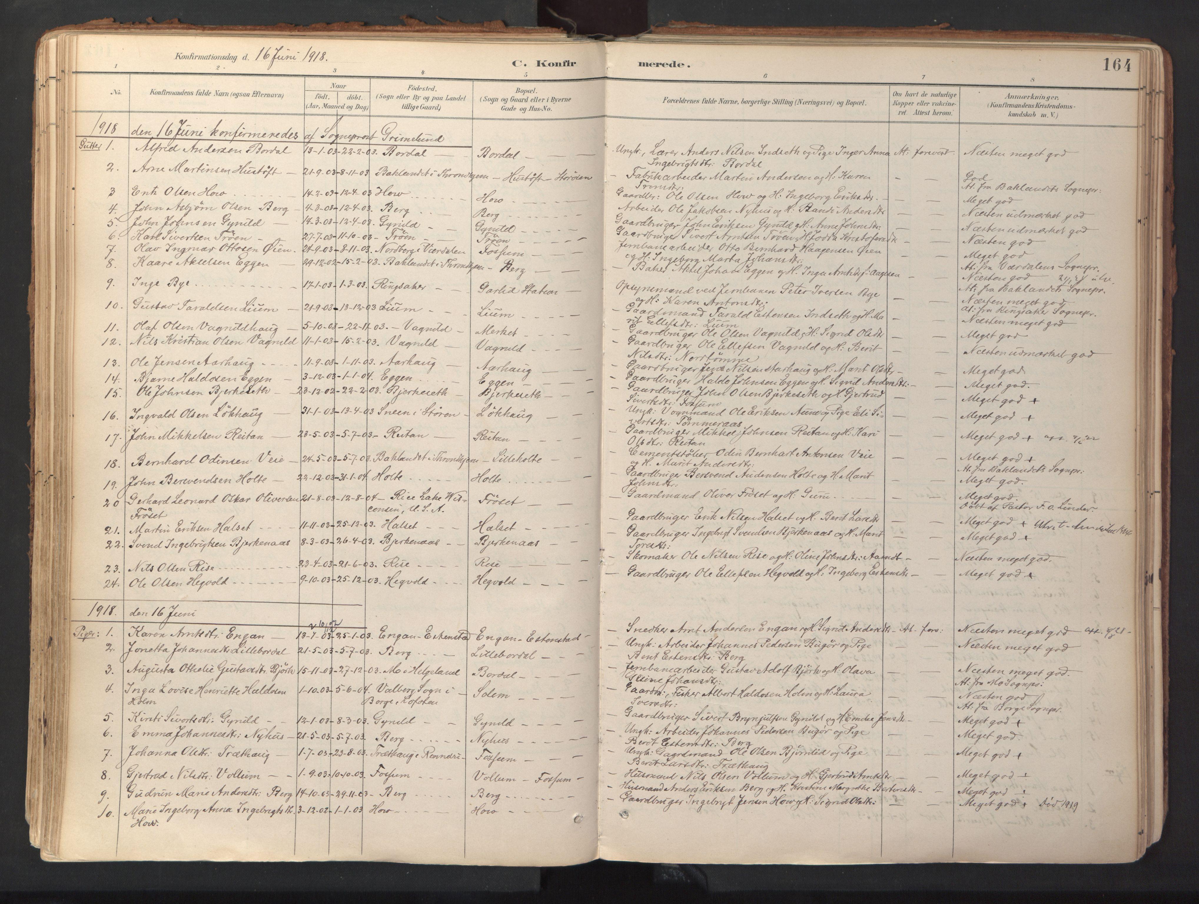 SAT, Ministerialprotokoller, klokkerbøker og fødselsregistre - Sør-Trøndelag, 689/L1041: Ministerialbok nr. 689A06, 1891-1923, s. 164