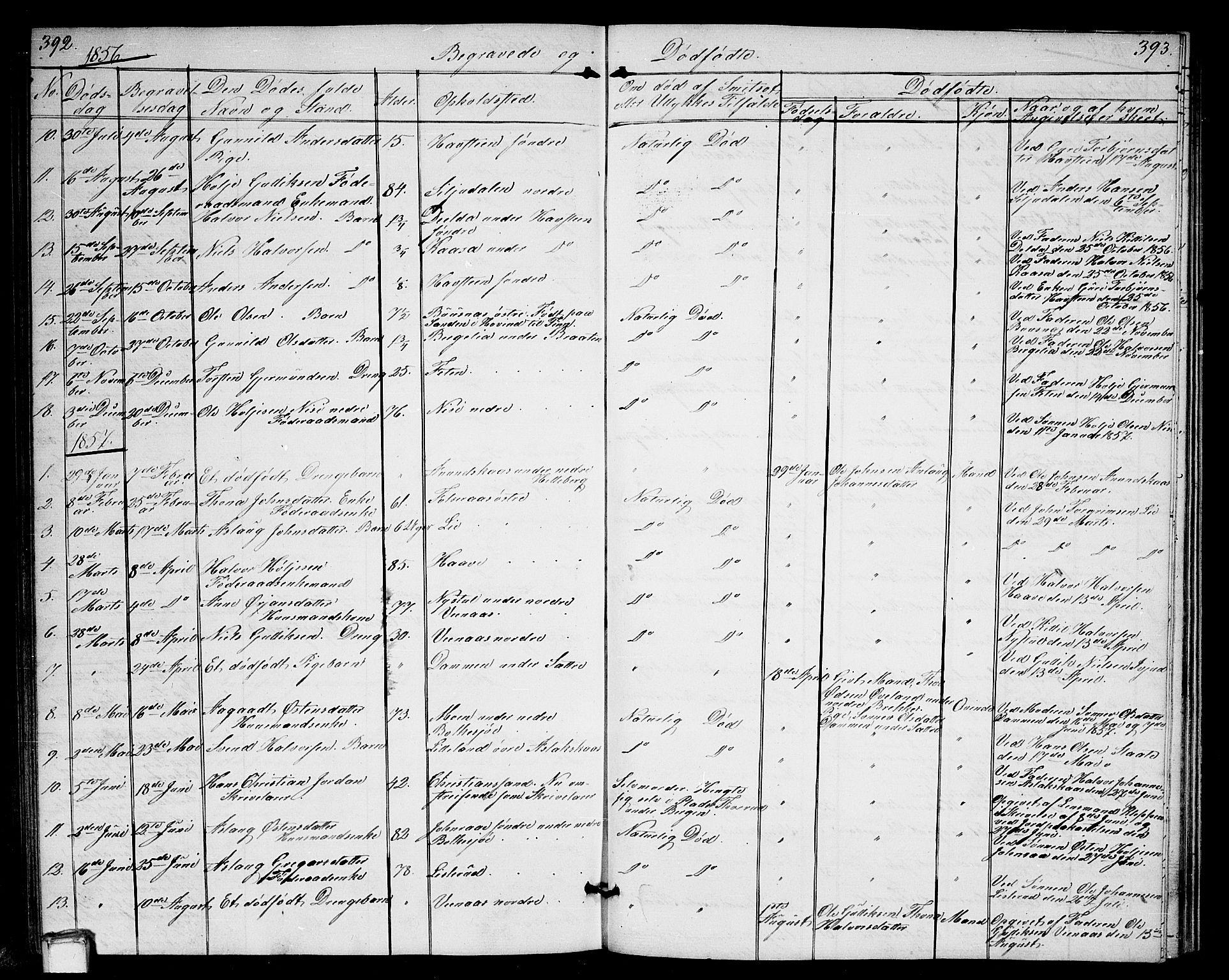 SAKO, Gransherad kirkebøker, G/Ga/L0002: Klokkerbok nr. I 2, 1854-1886, s. 392-393