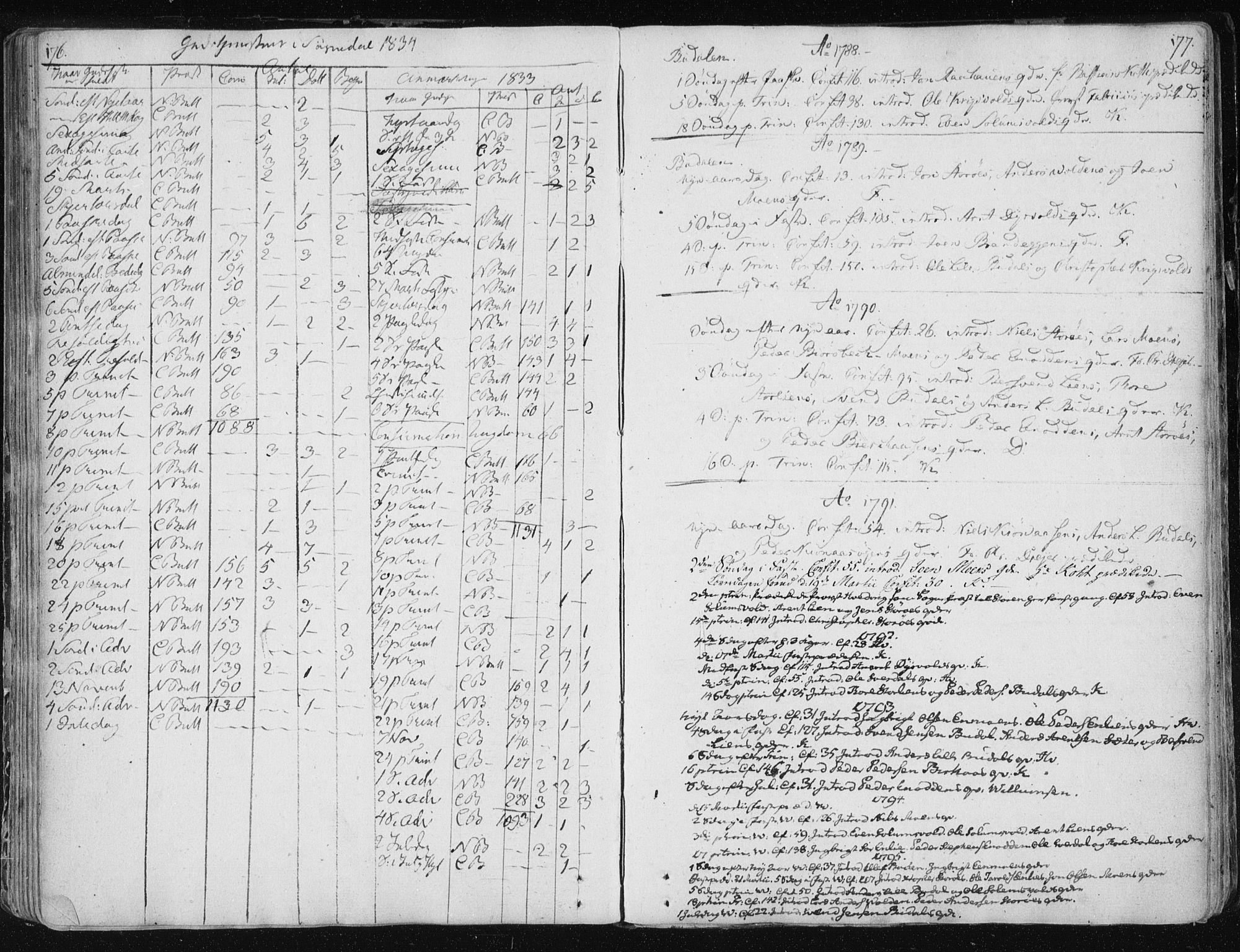 SAT, Ministerialprotokoller, klokkerbøker og fødselsregistre - Sør-Trøndelag, 687/L0994: Ministerialbok nr. 687A03 /3, 1788-1815, s. 176-177